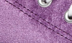 Night Purple Velvet swatch image
