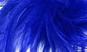 Silver/ Cobalt Blue swatch image