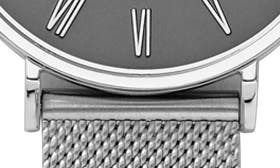 Silver/ Grey/ Silver swatch image