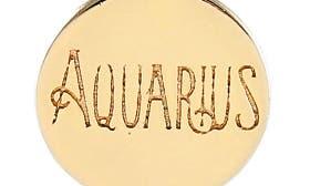 Aquarius - Gold swatch image
