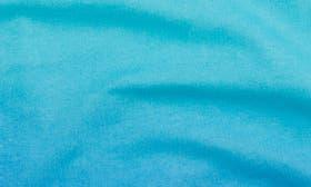 Light Aqua swatch image