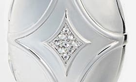 Sterling Silver swatch image