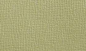 Pale Pistachio Green swatch image