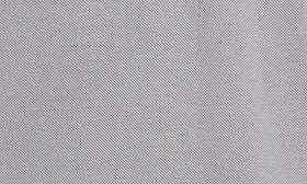 Platinum Grey swatch image