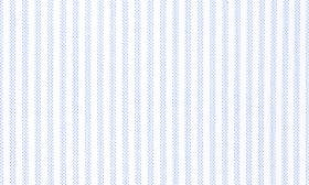 Blue White Bengal Stripe swatch image