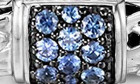 Silver/ Blue Sapphire swatch image