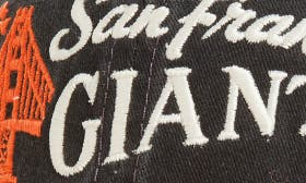 Giants swatch image