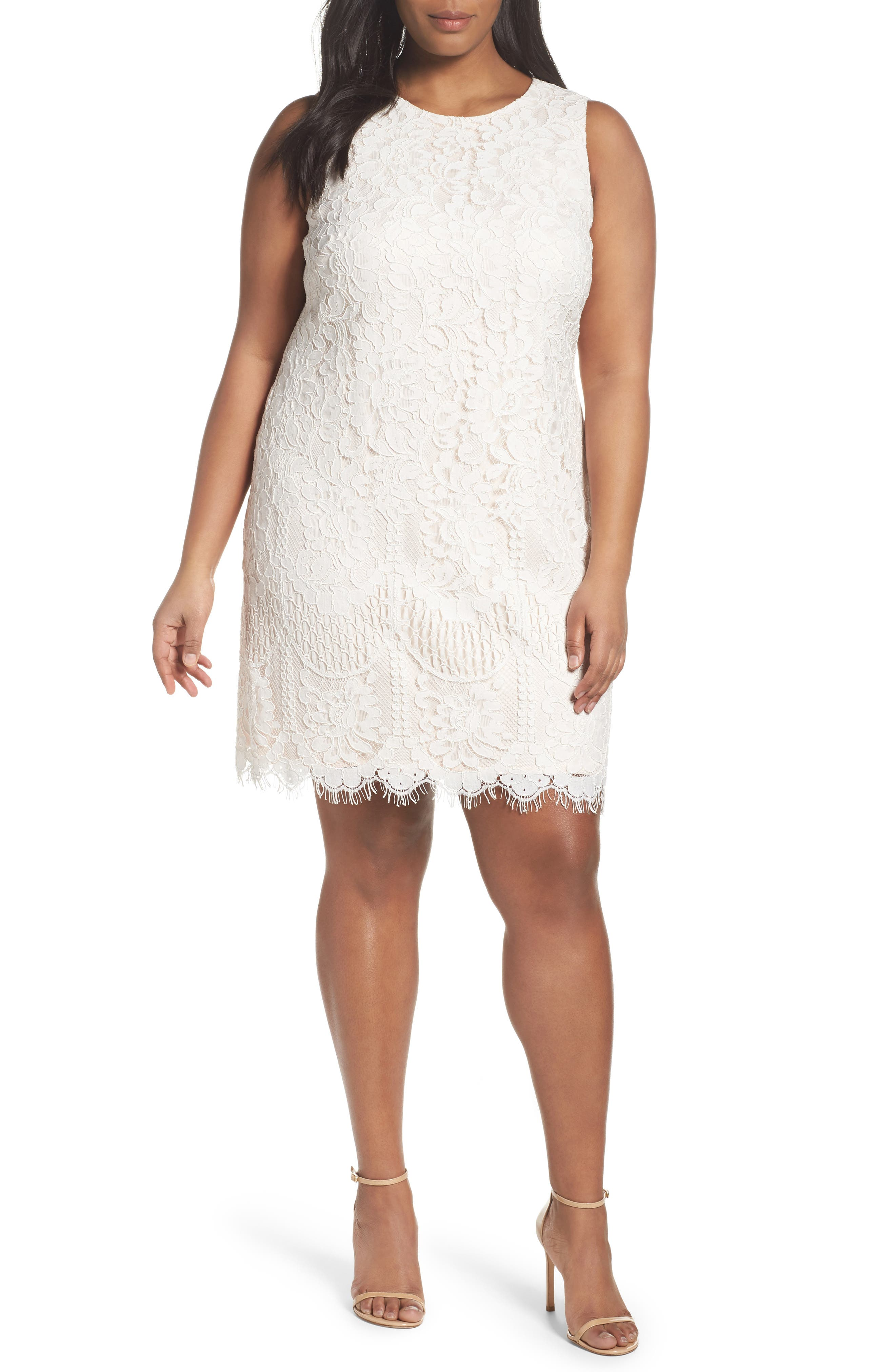 Eliza J Lace Shift Dress (Plus Size)