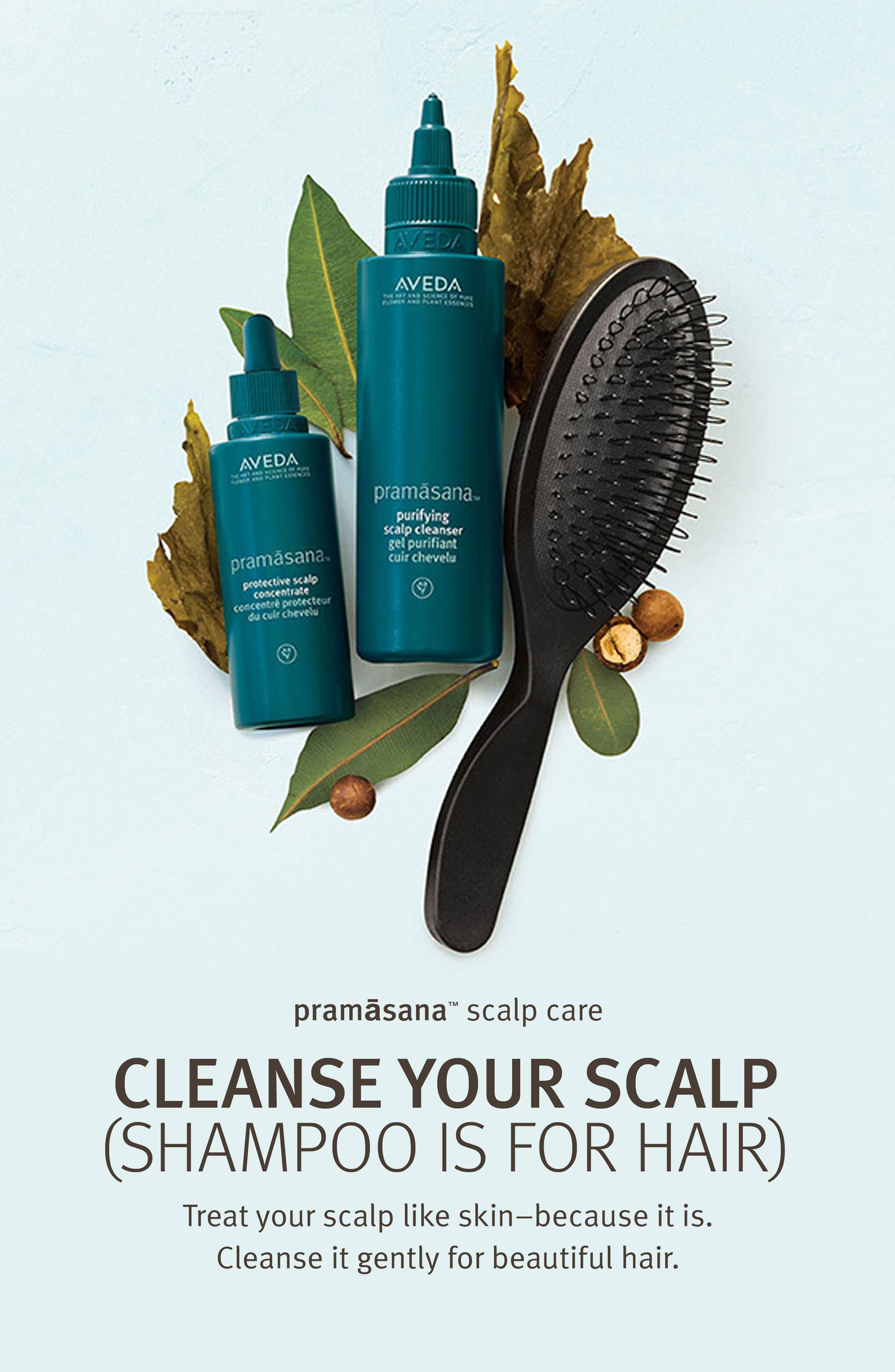 Alternate Image 2  - Aveda pramsana™ Exfoliating Scalp Brush
