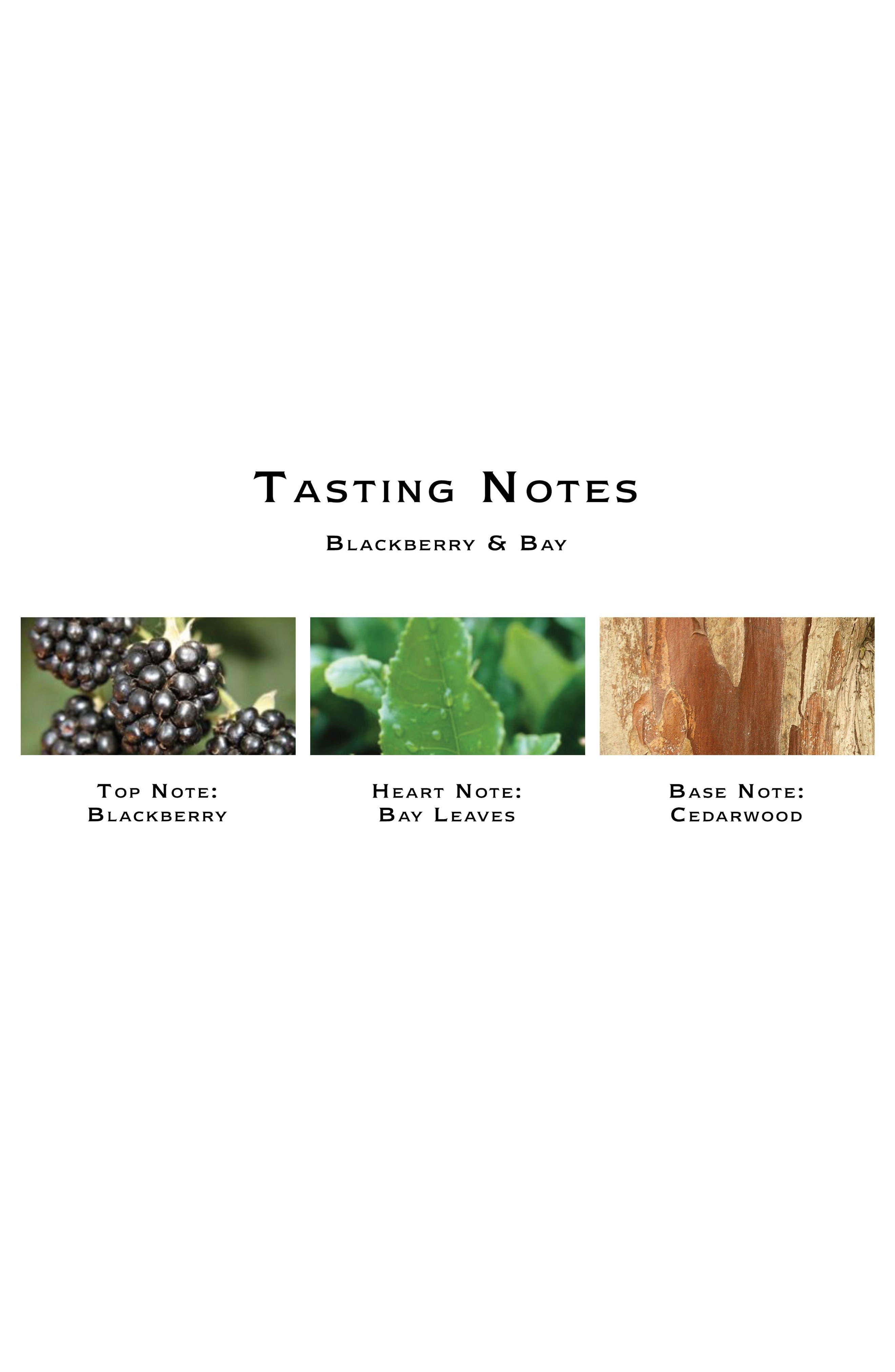 Blackberry & Bay Body Crème,                             Alternate thumbnail 2, color,                             No Color