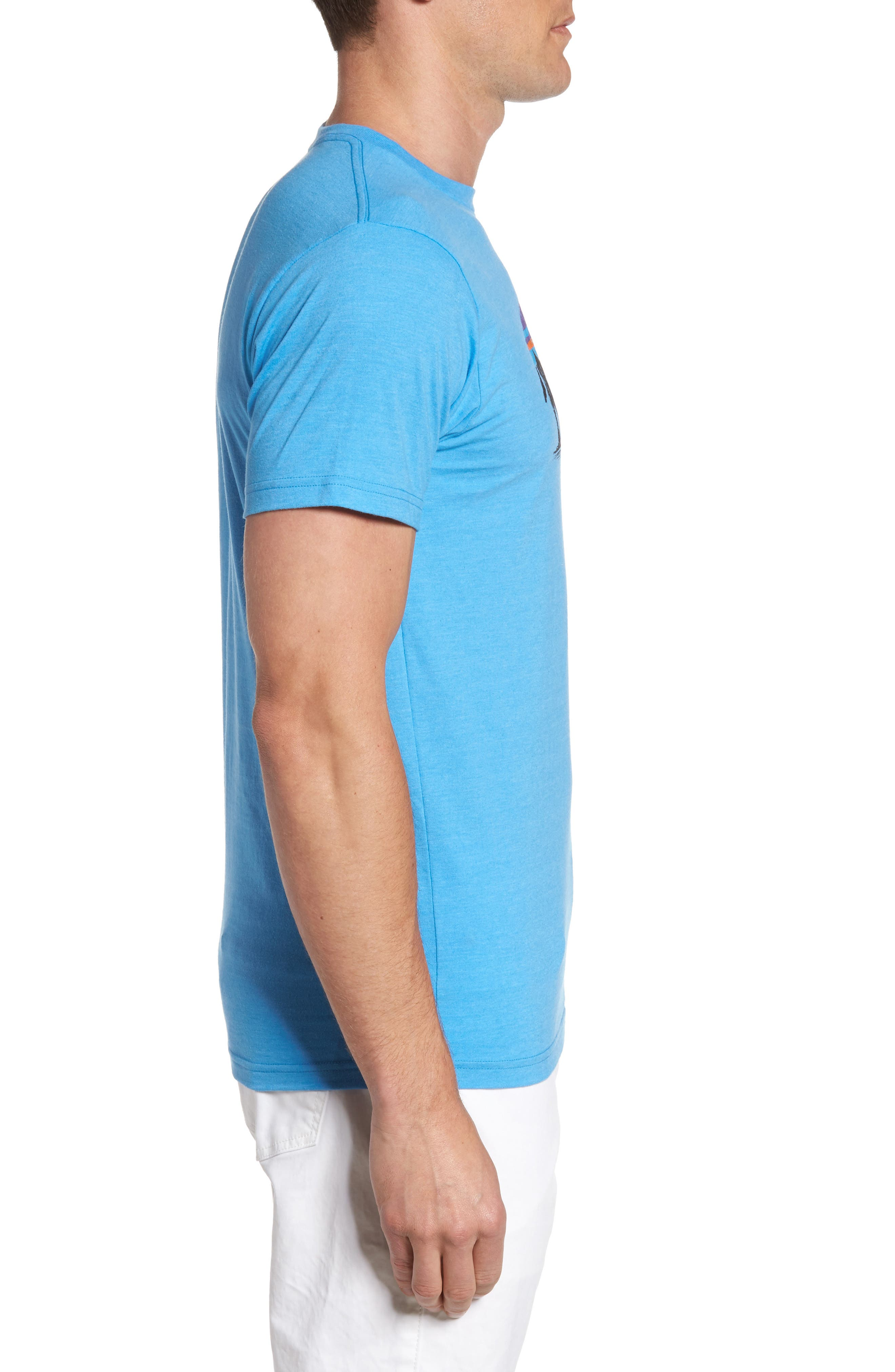 Fitz Roy Bison T-Shirt,                             Alternate thumbnail 3, color,                             Radar Blue