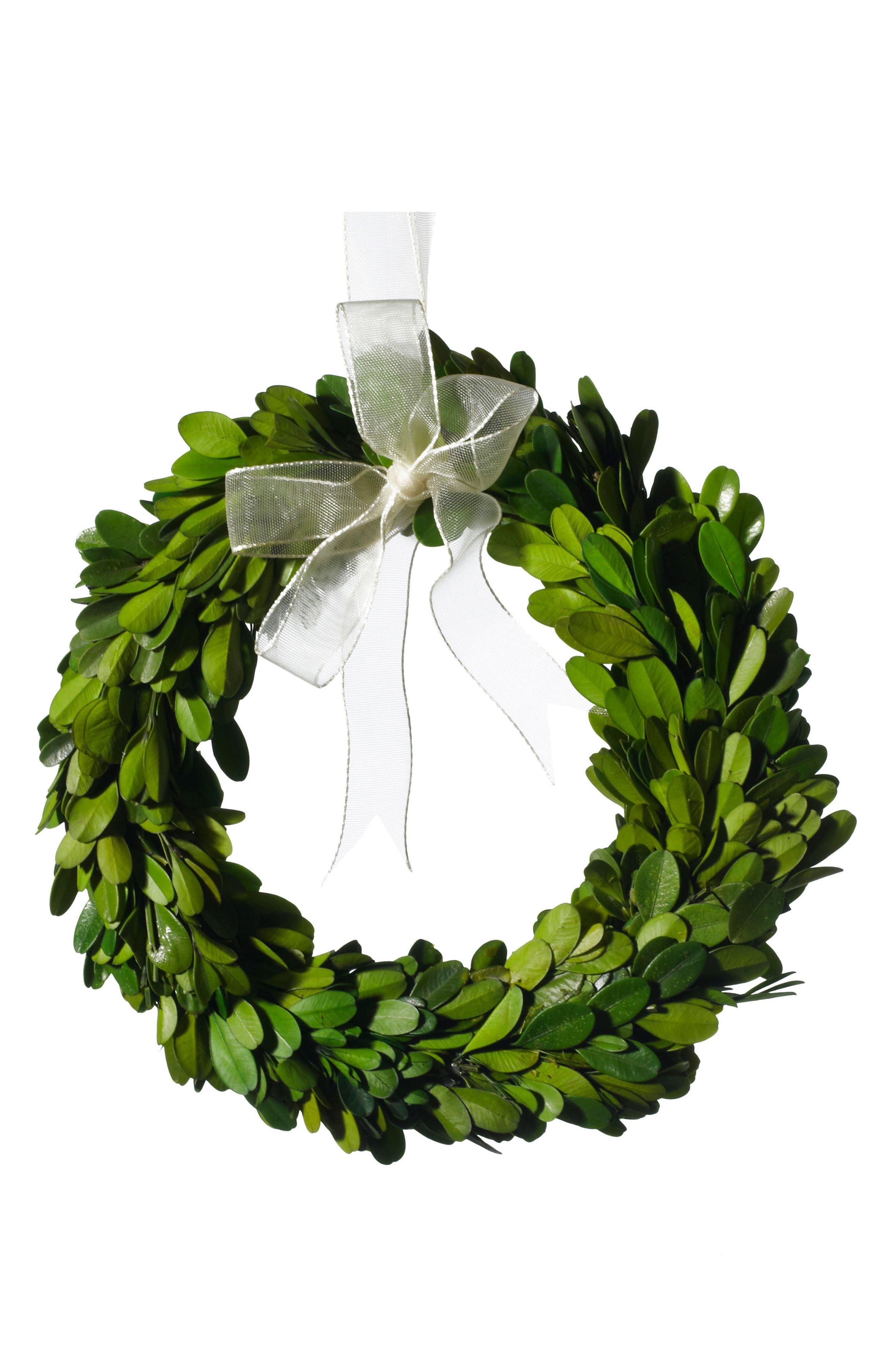 Main Image - Accent Decor Mini Boxwood Wreath