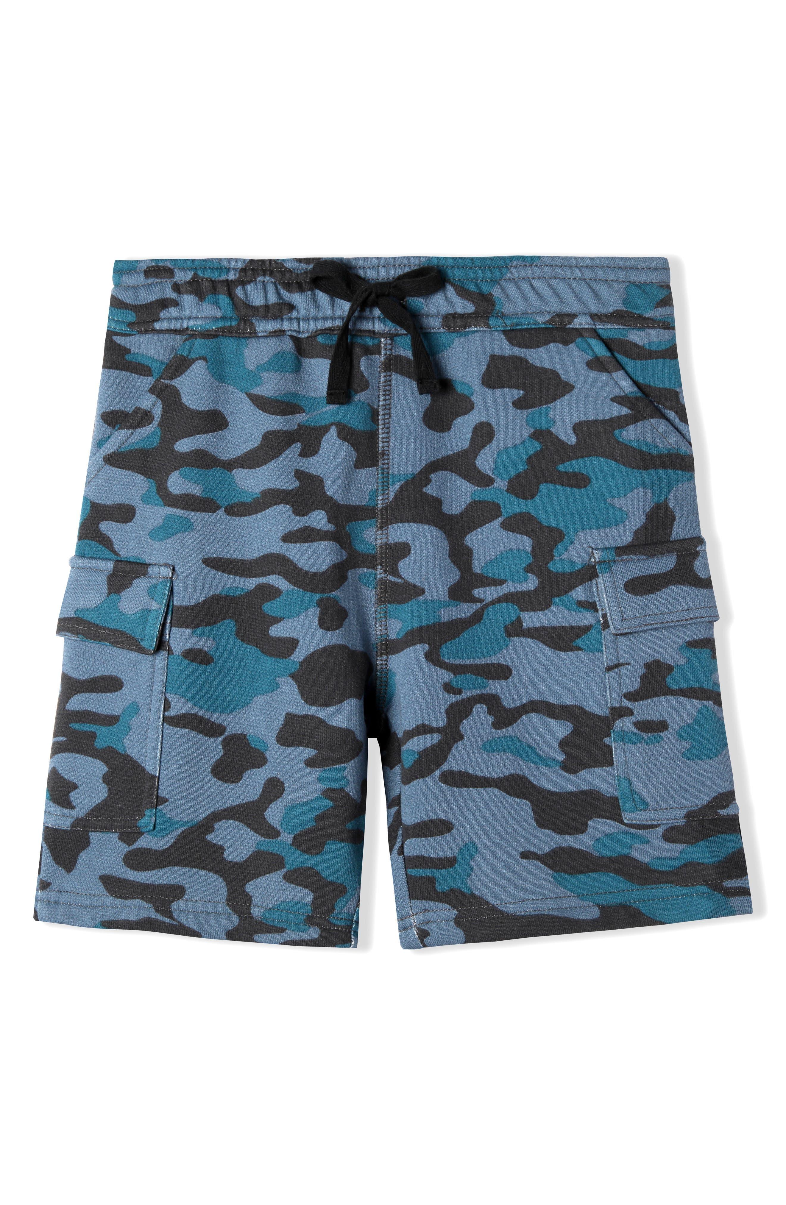 Ayden Print Shorts,                         Main,                         color, Navy Camo