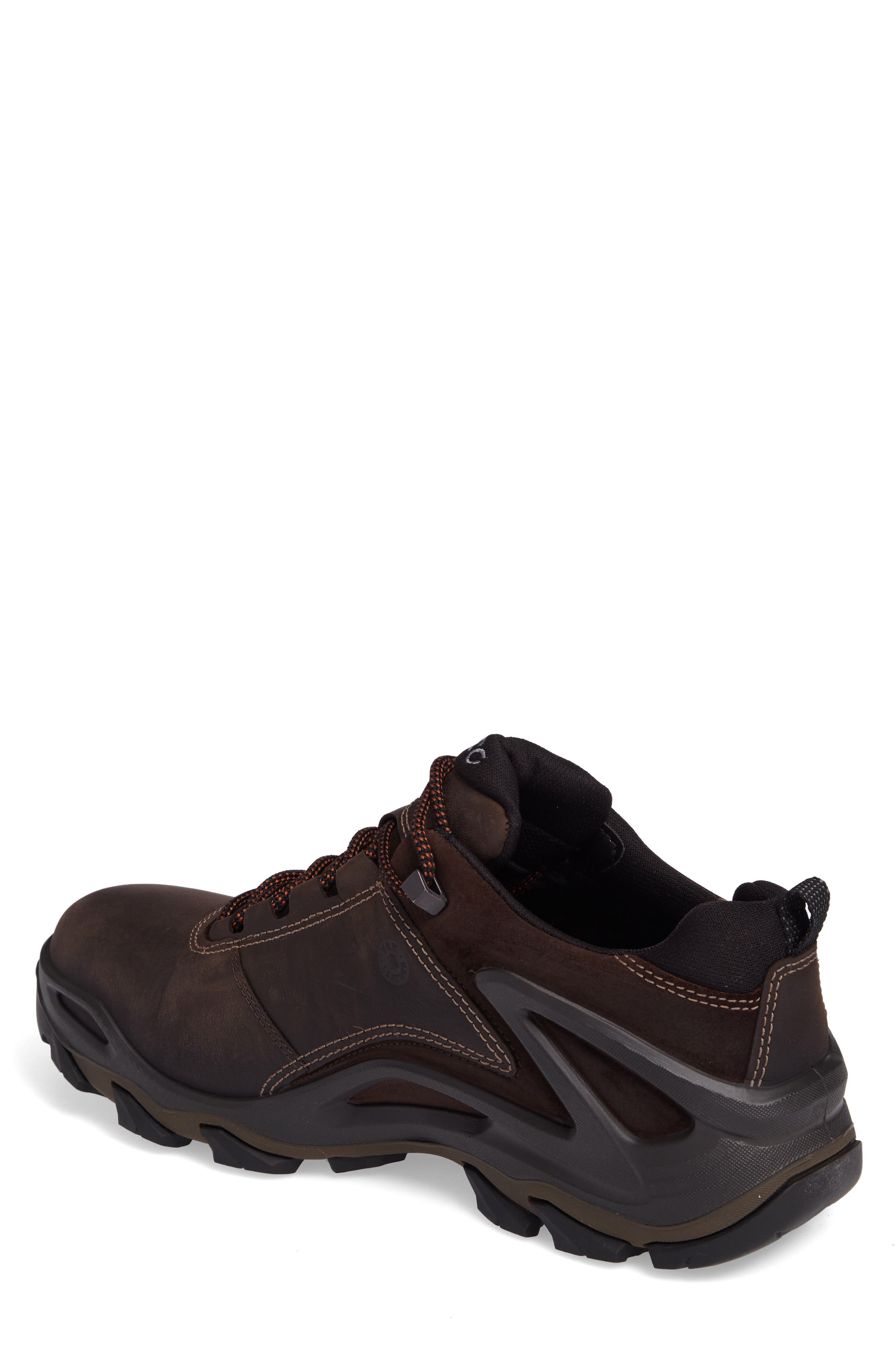 Terra Evo GTX Low Hiking Shoe,                             Alternate thumbnail 2, color,                             Coffee/ Mocha Nubuck