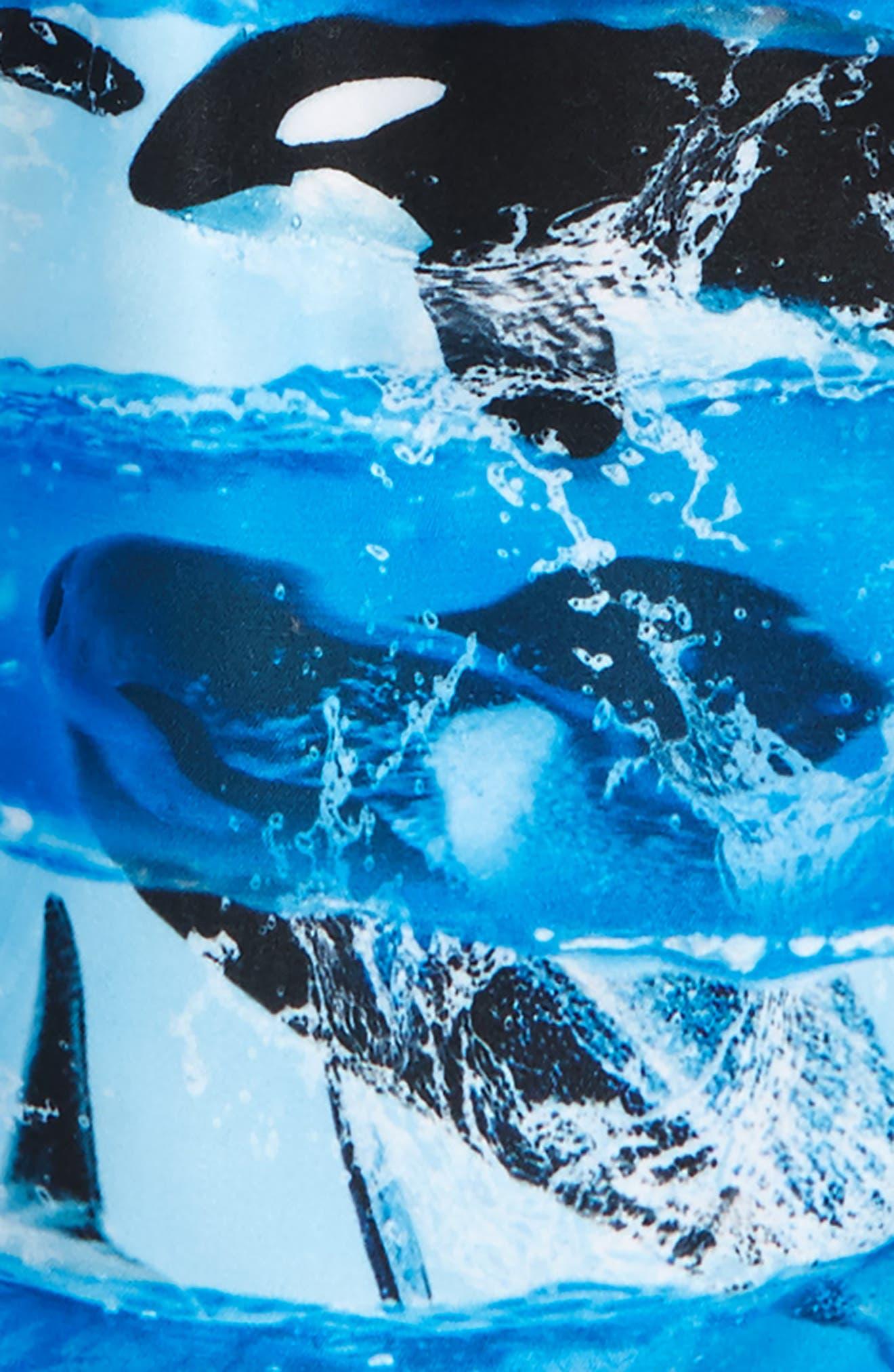 Nario Swim Trunks,                             Alternate thumbnail 2, color,                             Killer Whale