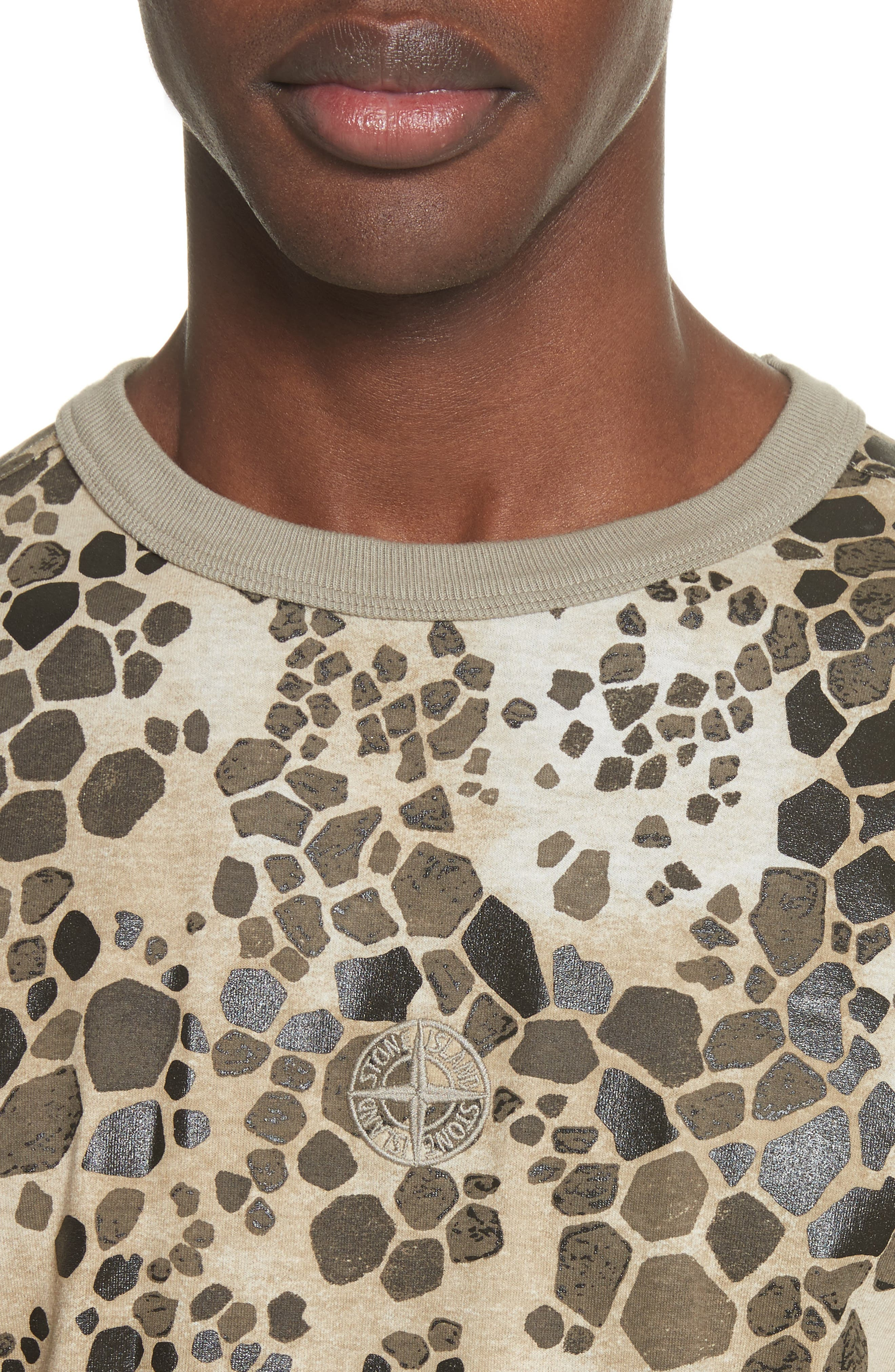 Camo Print T-Shirt,                             Alternate thumbnail 4, color,                             Brown
