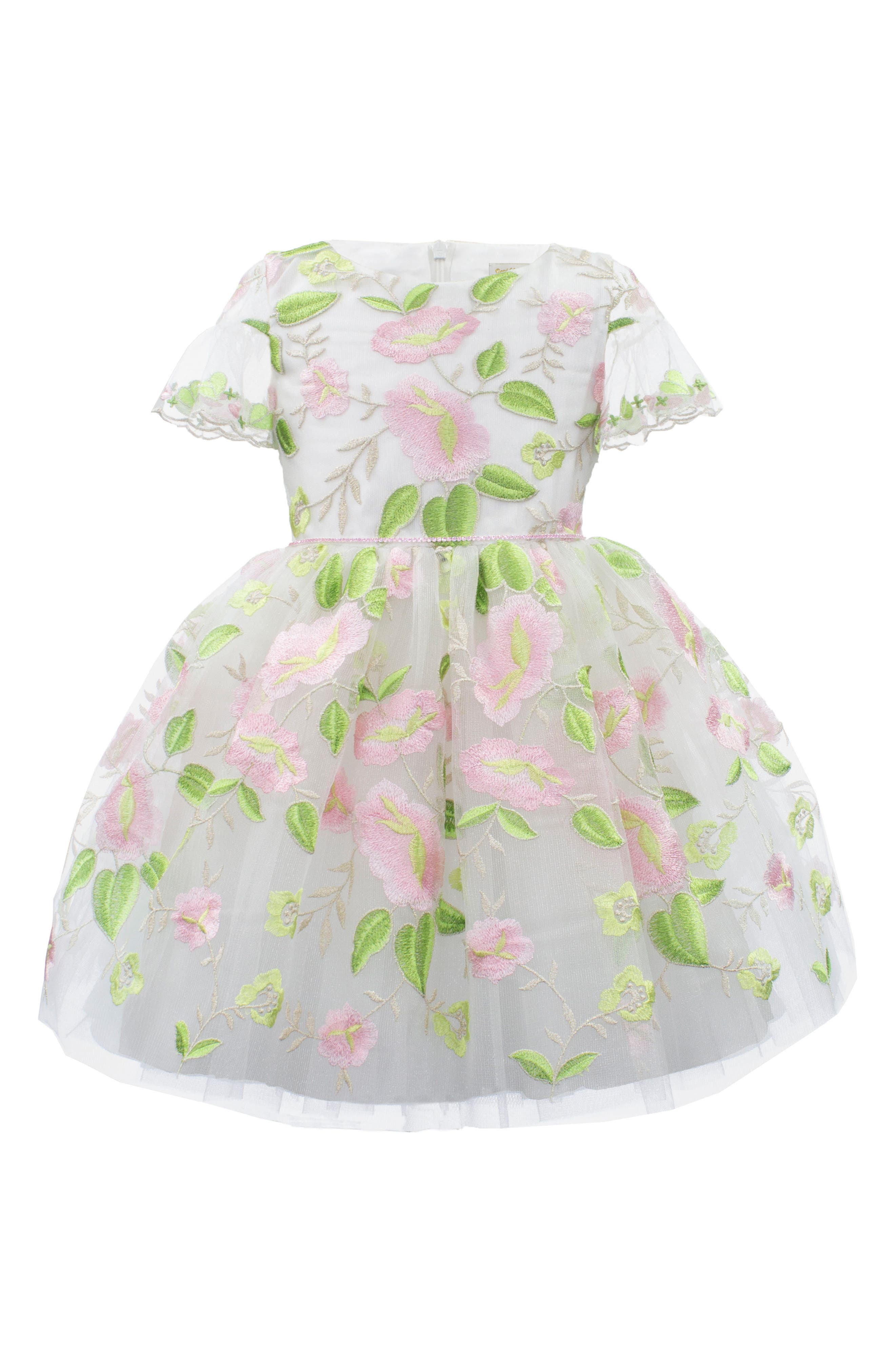 David Charles Embroidered Tulle Party Dress (Toddler Girls, Little Girls & Big Girls)