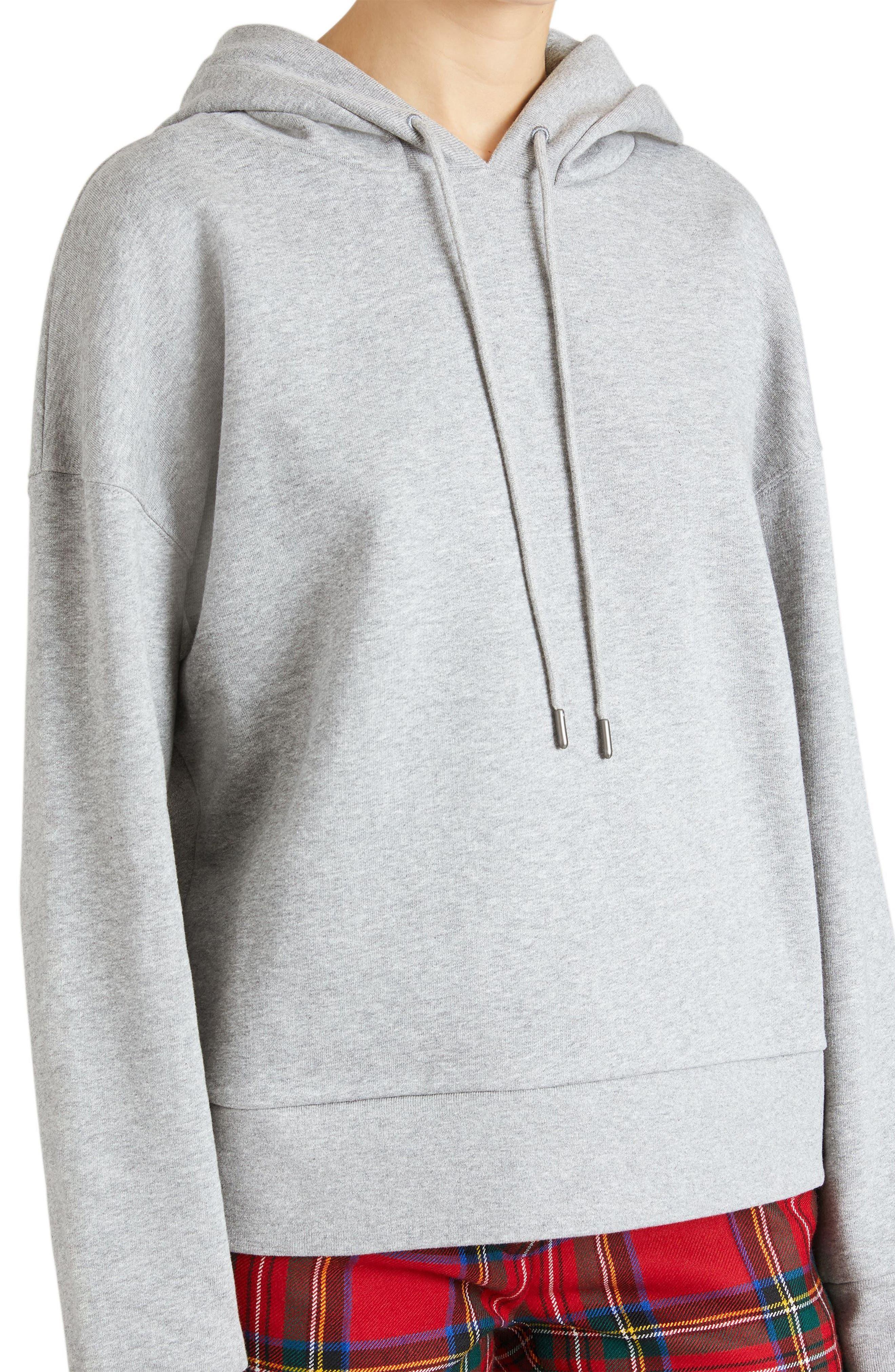 Escara Embroidered Hoodie,                         Main,                         color, Pale Grey Melange