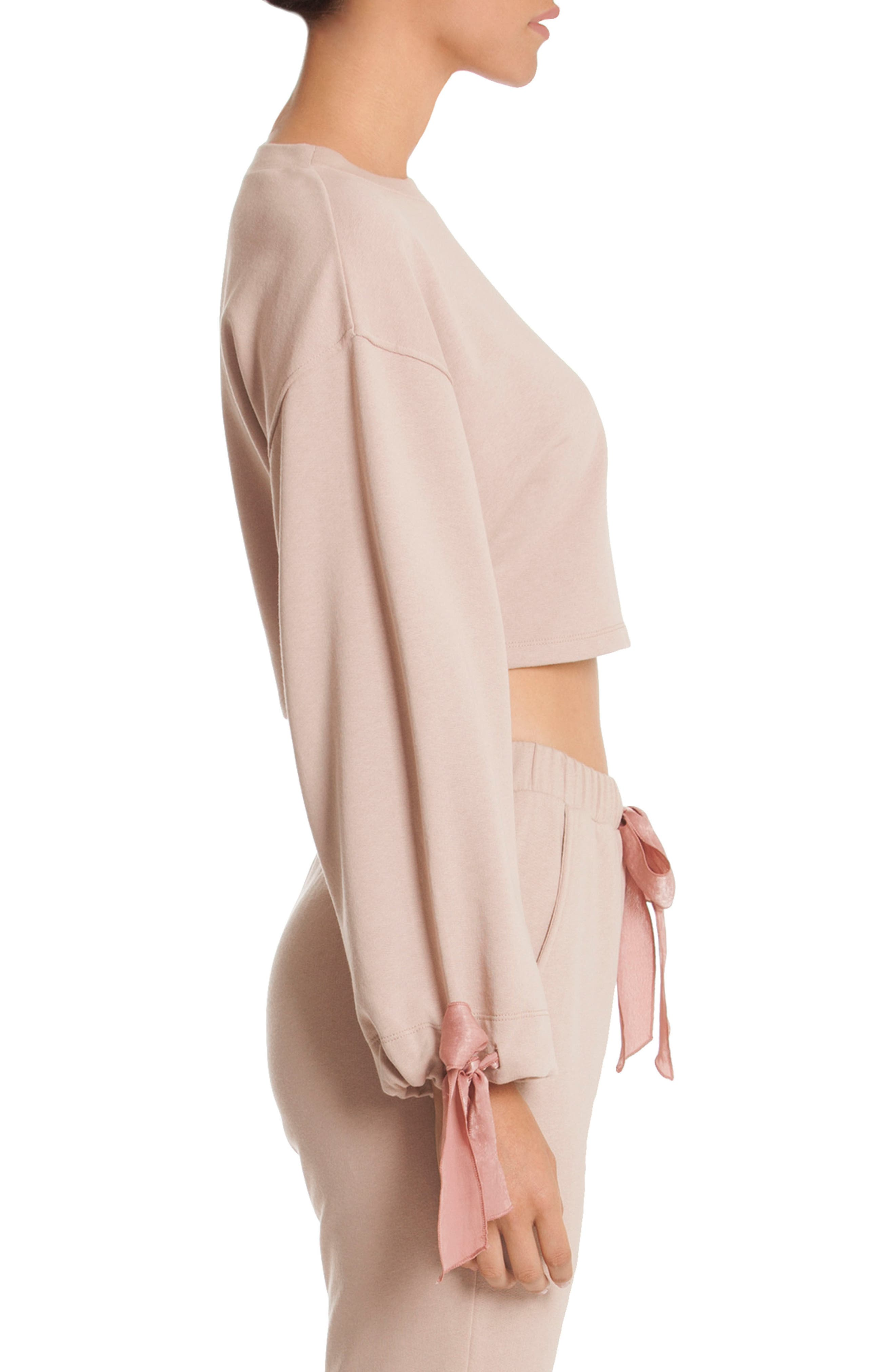 Crop Sweatshirt,                             Alternate thumbnail 3, color,                             Taupe