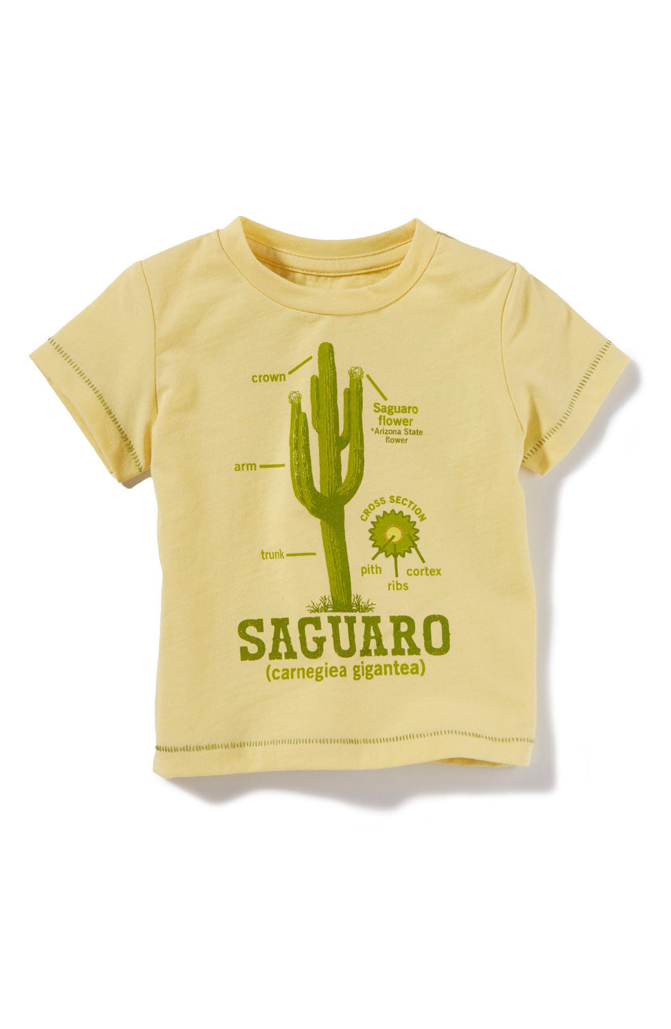 Peek Cactus Graphic T-Shirt (Baby)