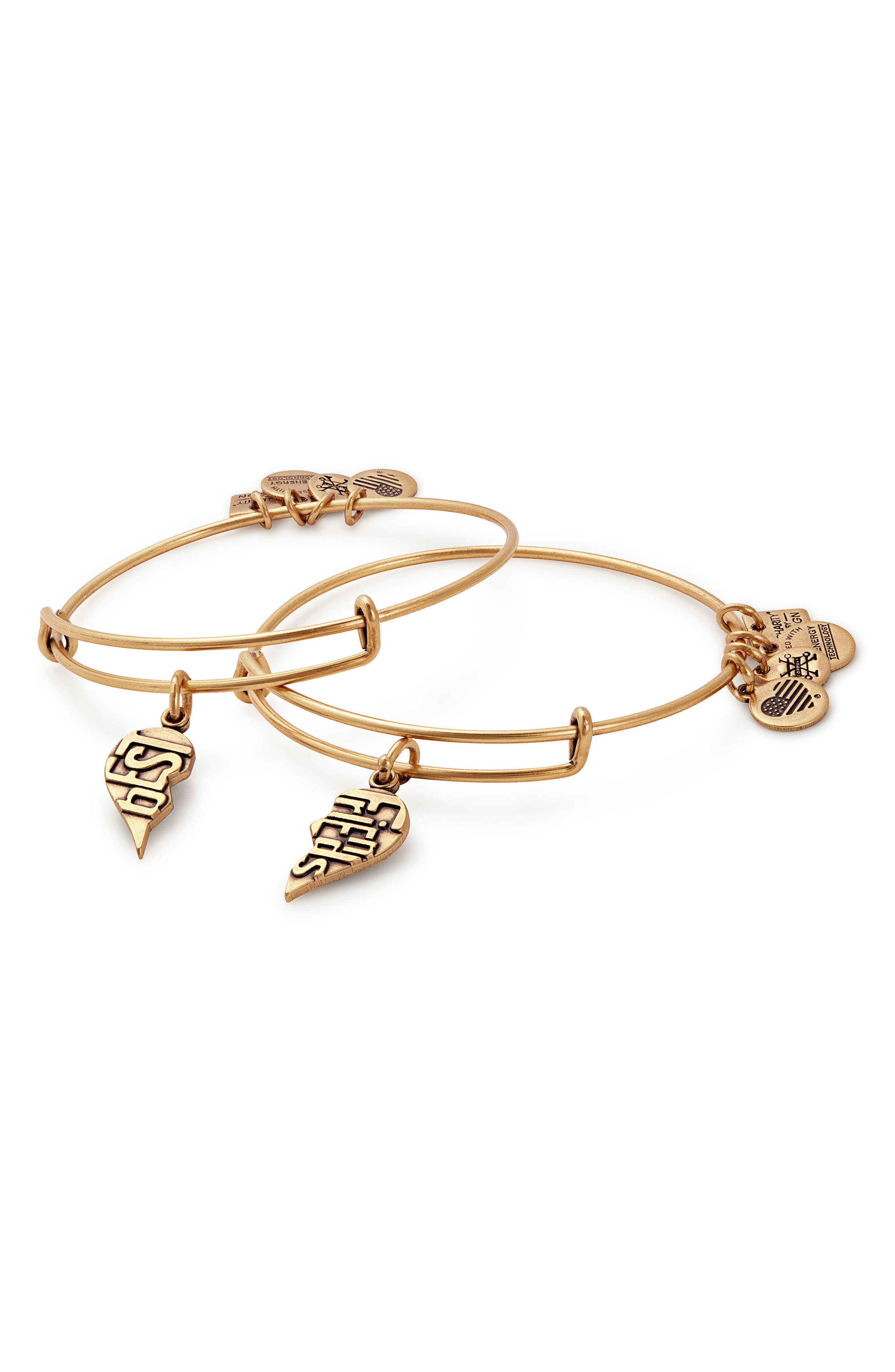 Alex And Ani  Charity by Design - Best Friends Set of 2 Charm Adjustable Bangles