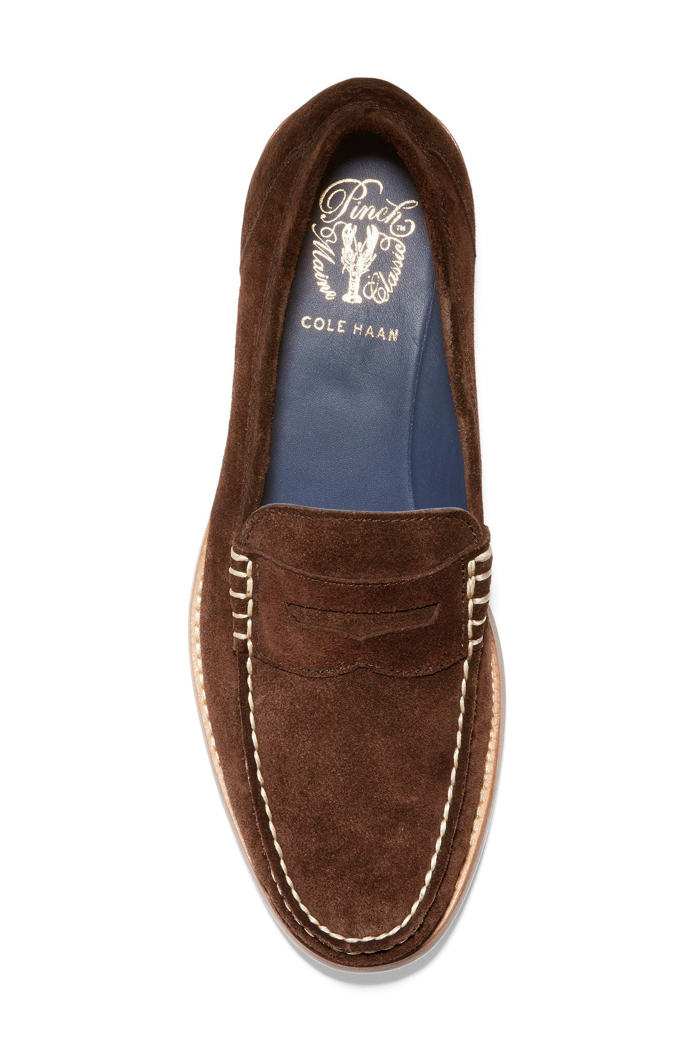 'Pinch Grand' Penny Loafer,                             Alternate thumbnail 5, color,                             Brown Suede