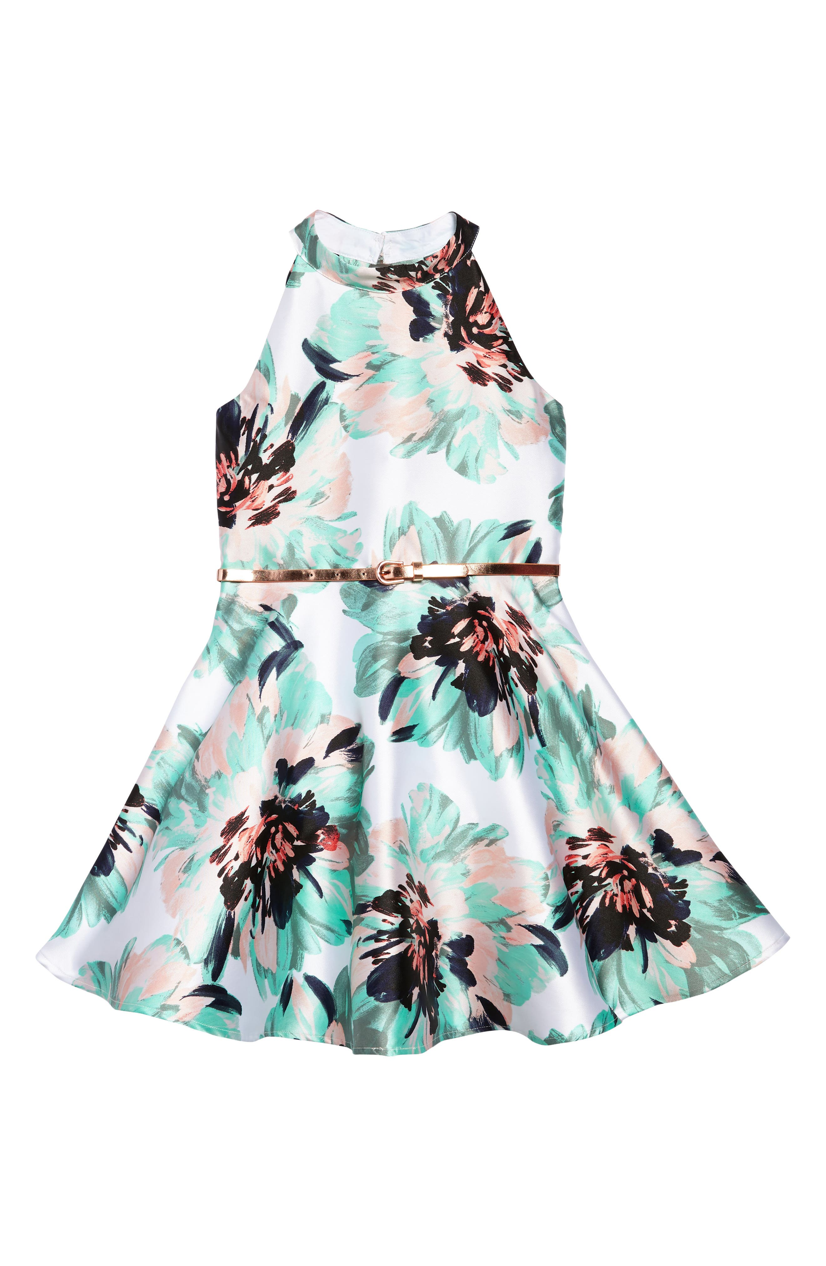 Zunie Floral Fit & Flare Dress (Big Girls)