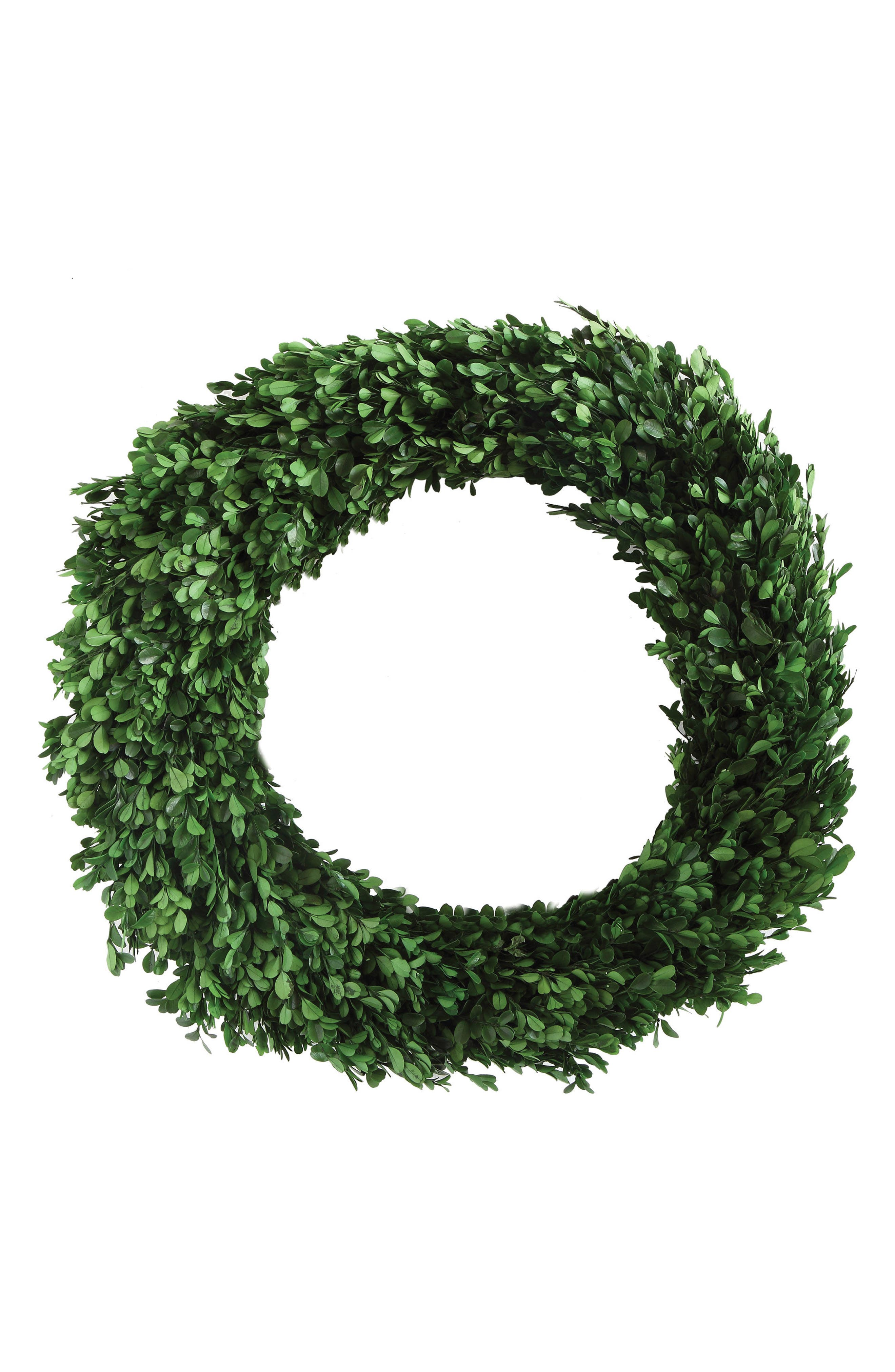 Boxwood Preserved Wreath,                         Main,                         color, Green