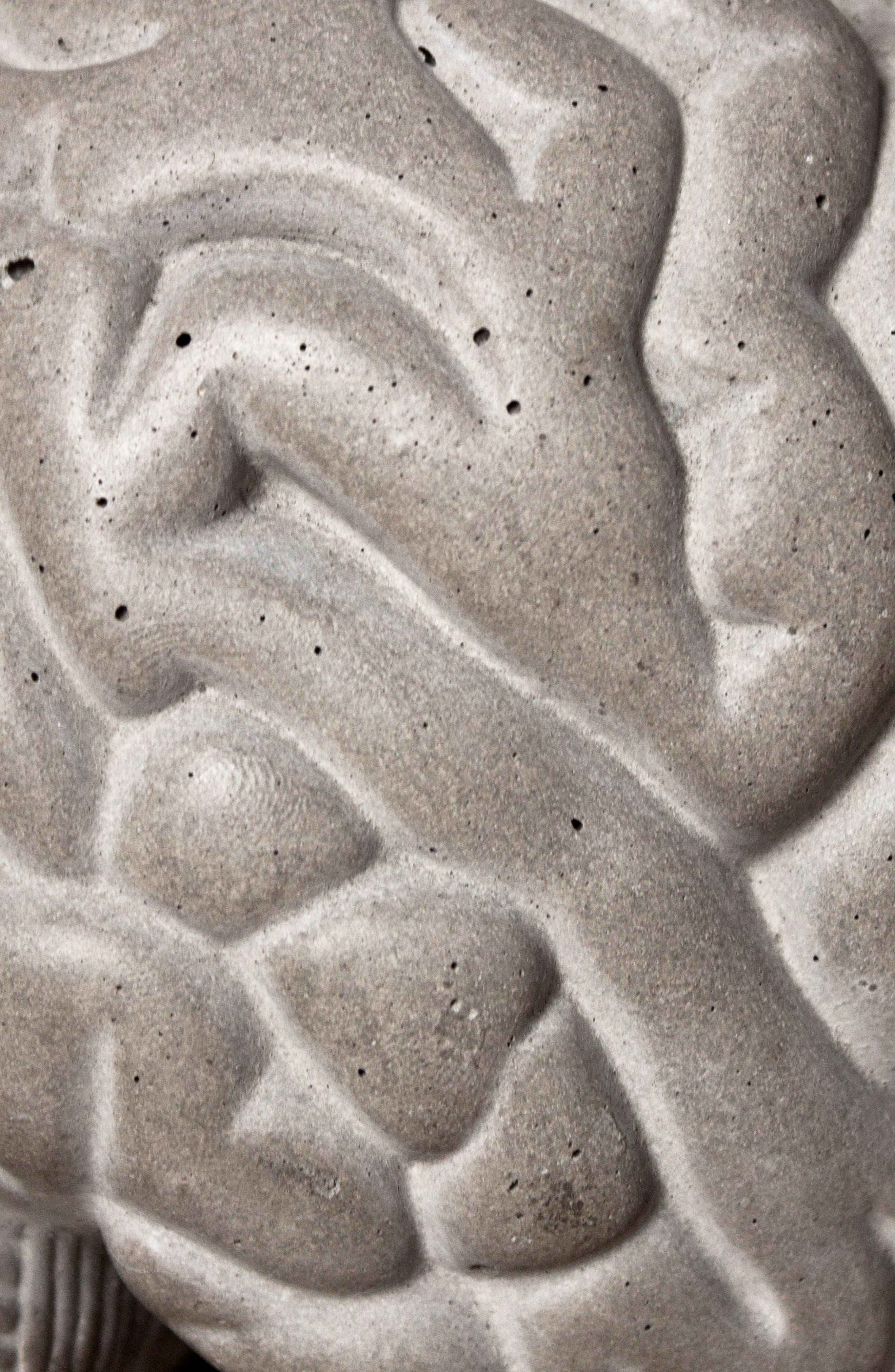 Lyon Béton Gray Matters Bookends,                             Alternate thumbnail 2, color,                             Cement