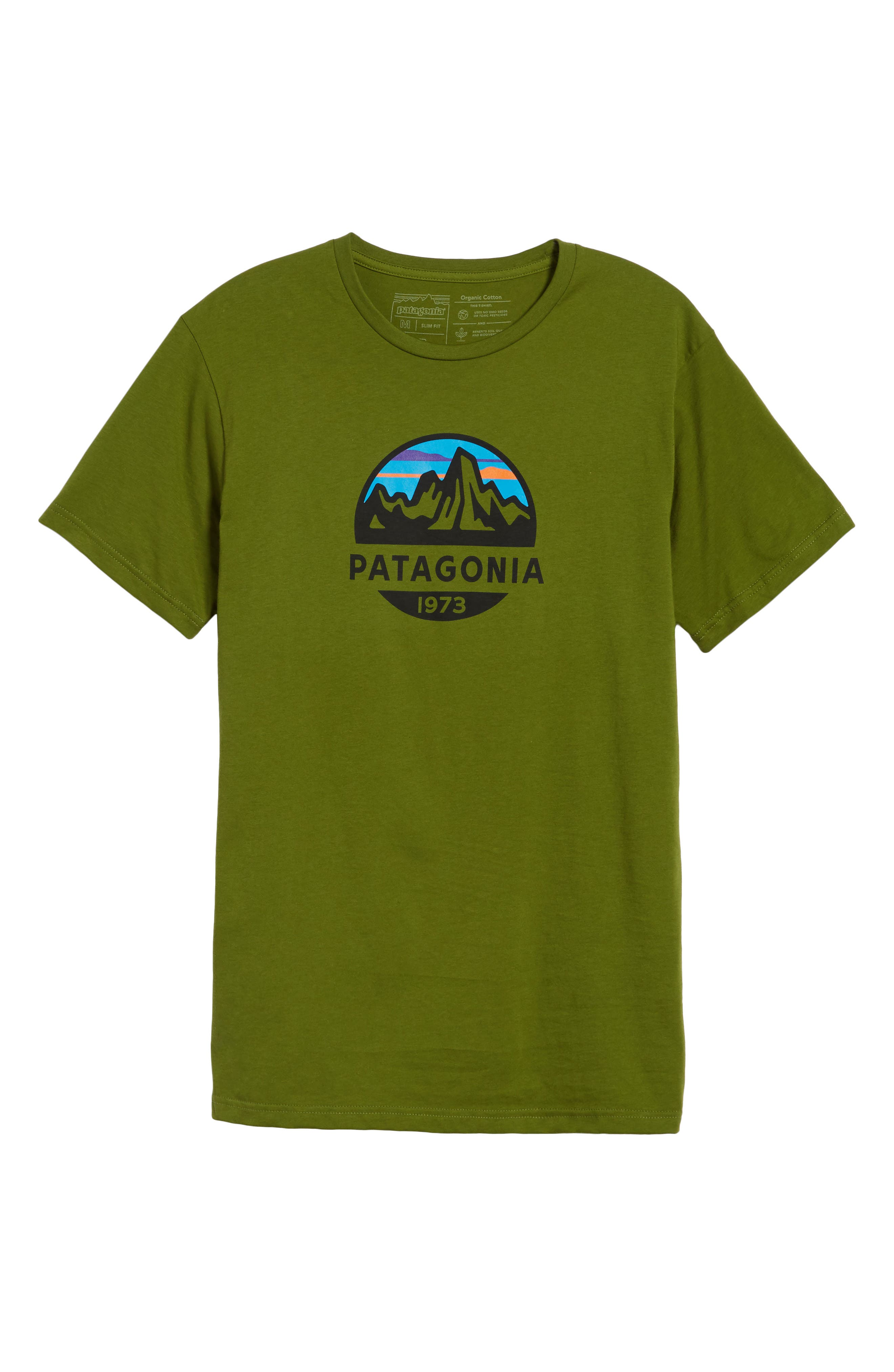 Fitz Roy Scope Crewneck T-Shirt,                             Alternate thumbnail 6, color,                             Sprouted Green