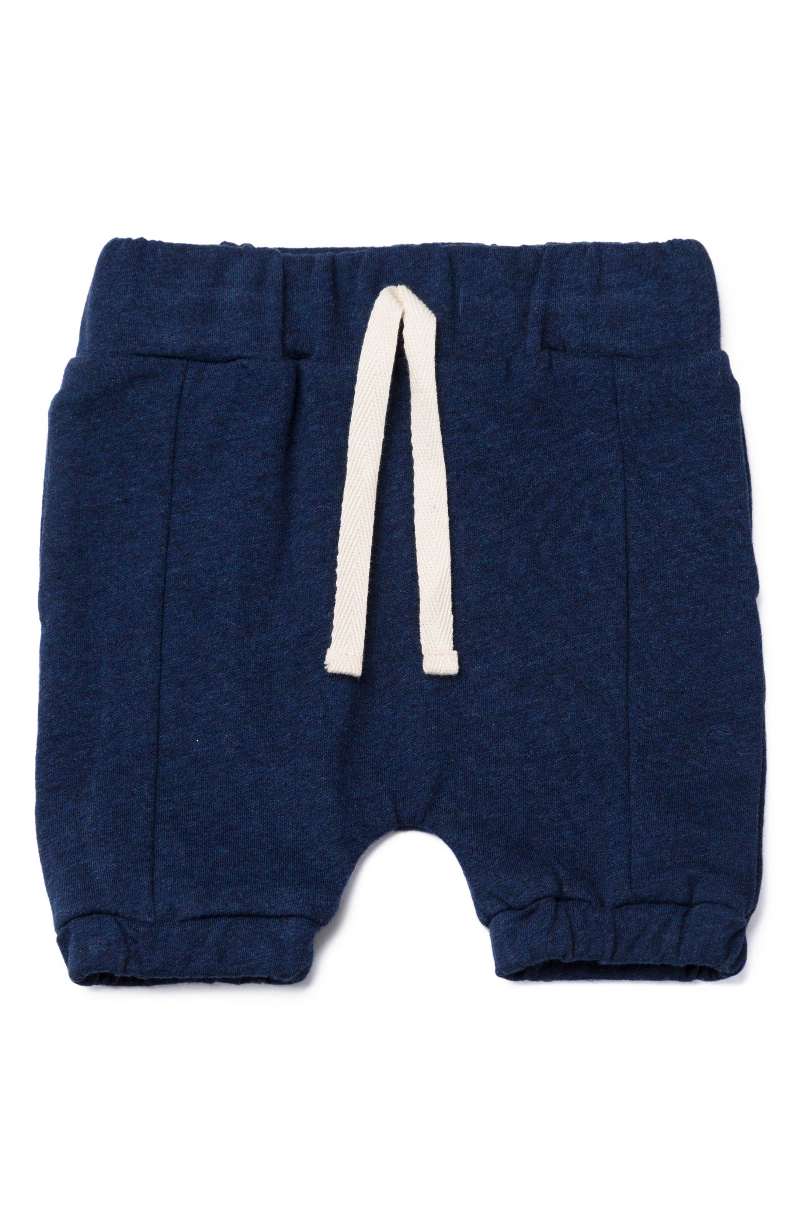 Beach Organic Cotton Jogger Pants,                             Main thumbnail 1, color,                             Navy Heather