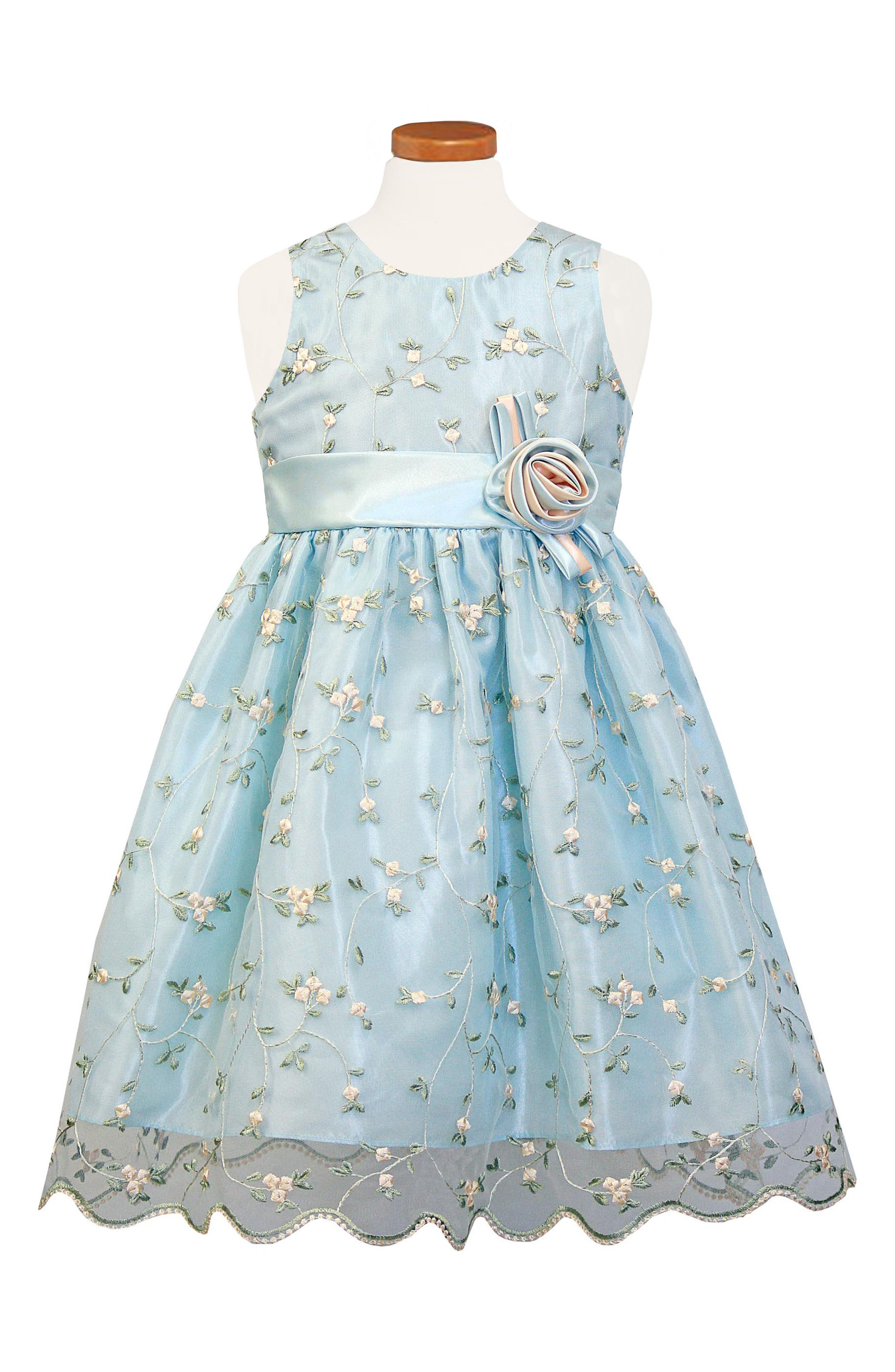 Embroidered Floral Organza Party Dress,                         Main,                         color, Blue