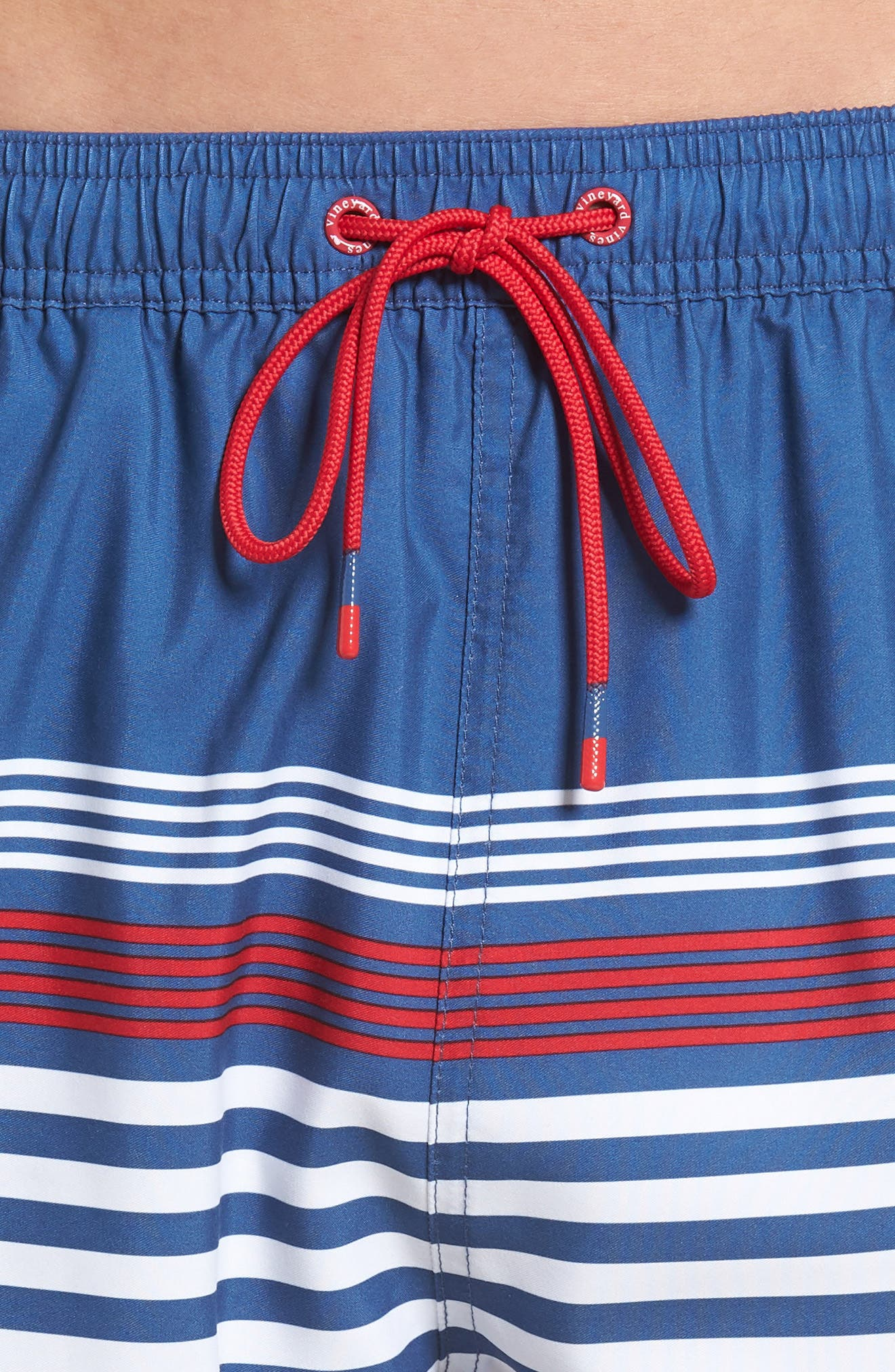 Chappy Summerall Stripe Swim Trunks,                             Alternate thumbnail 4, color,                             Moonshine