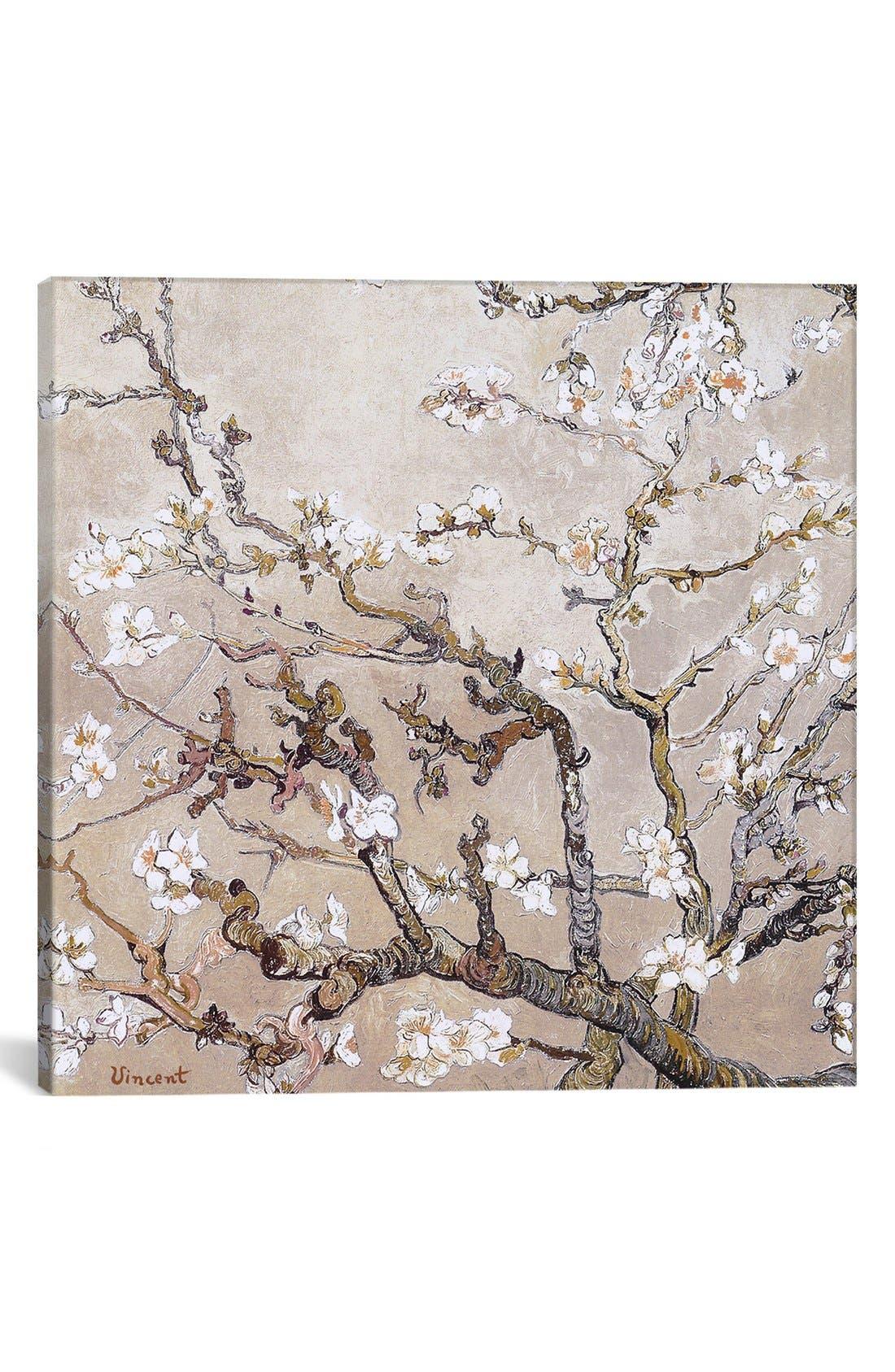 Main Image - iCanvas 'Almond Branches - Vincent van Gogh' Giclée Print Canvas Art