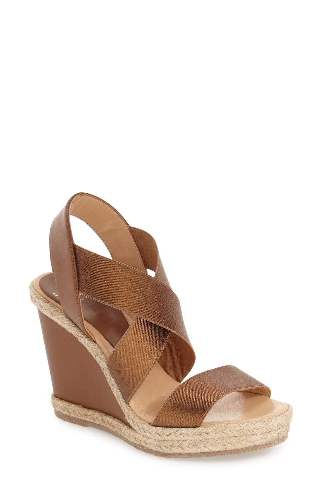Alternate Image 1 Selected - André Assous 'Cassandra' Wedge Sandal (Women)
