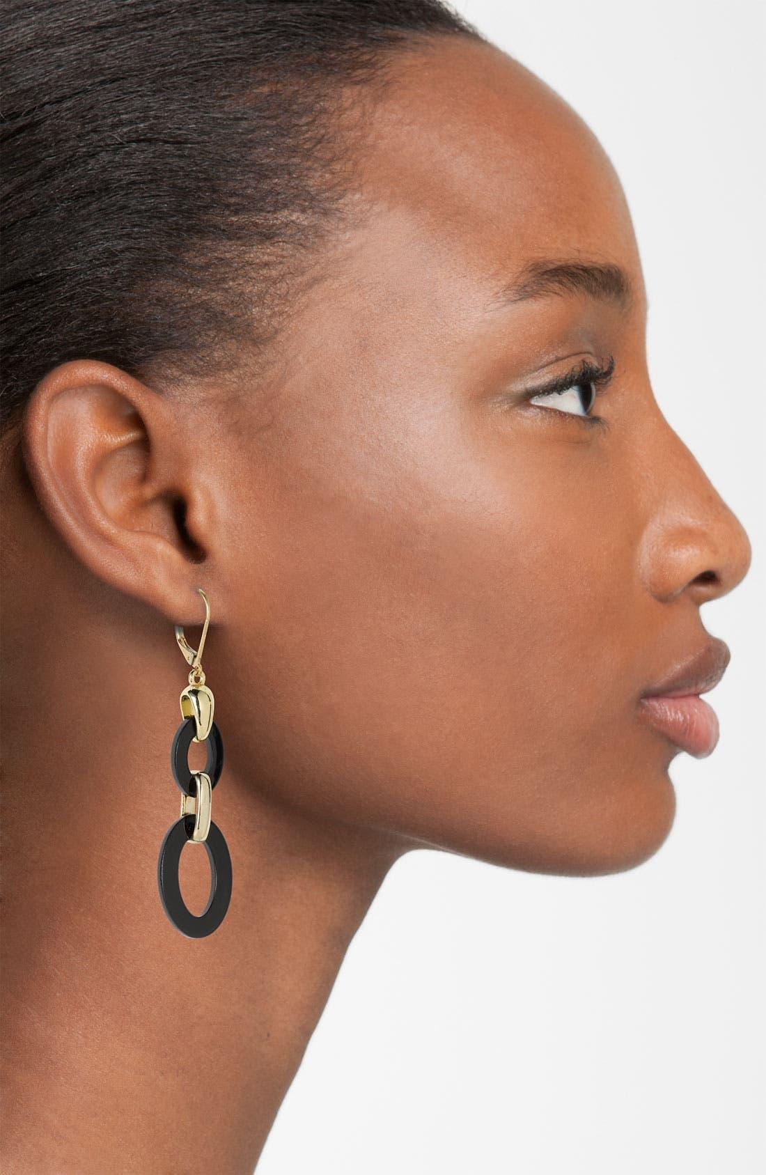 Alternate Image 2  - Anne Klein Double Link Earrings