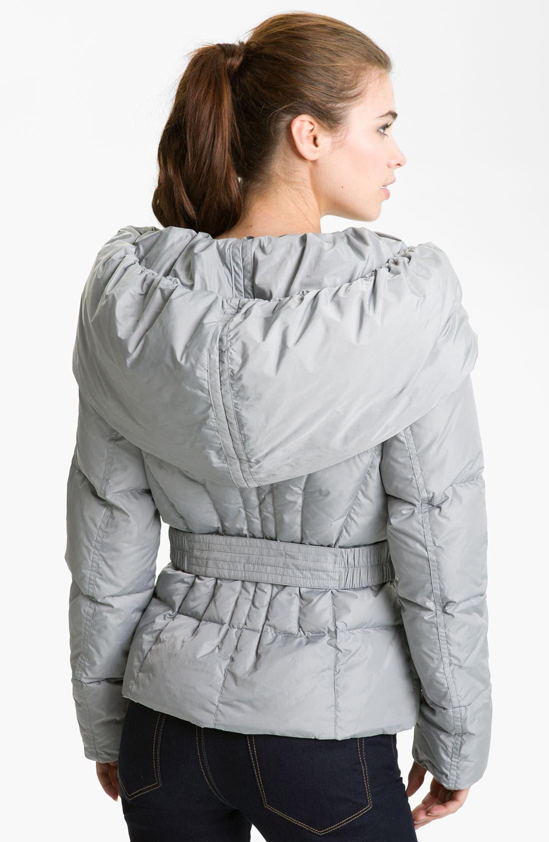 Alternate Image 2  - Add Down Hooded Down Jacket