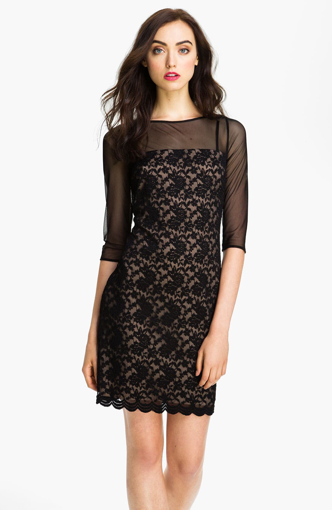 Alternate Image 1 Selected - Adrianna Papell Illusion Yoke Lace & Mesh Dress