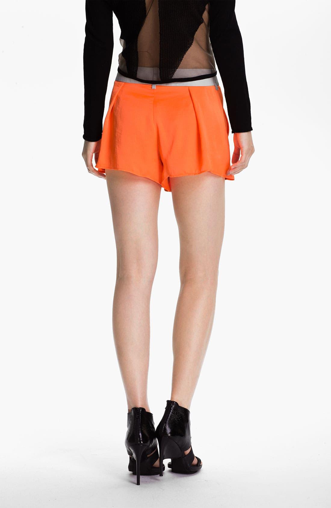 Alternate Image 3  - Helmut Lang 'Chroma' Wide Leg Shorts