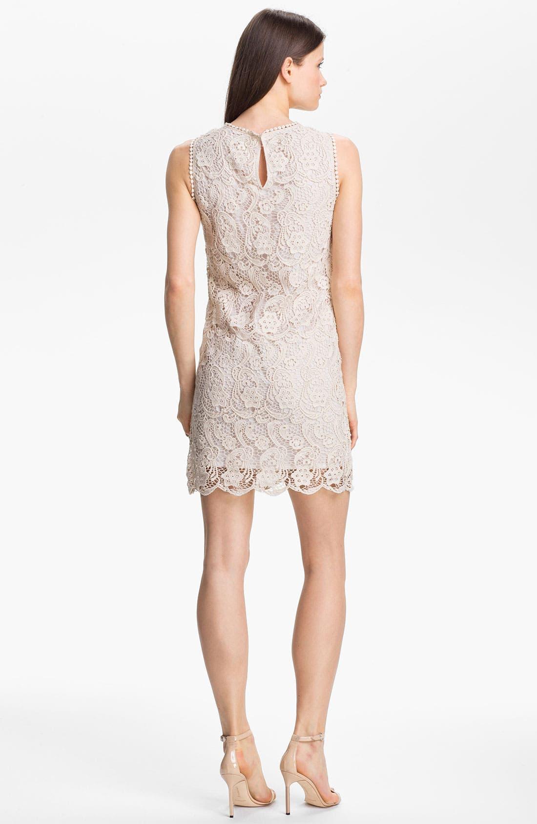 Alternate Image 2  - Joie 'Vionne' Cotton Shift Dress