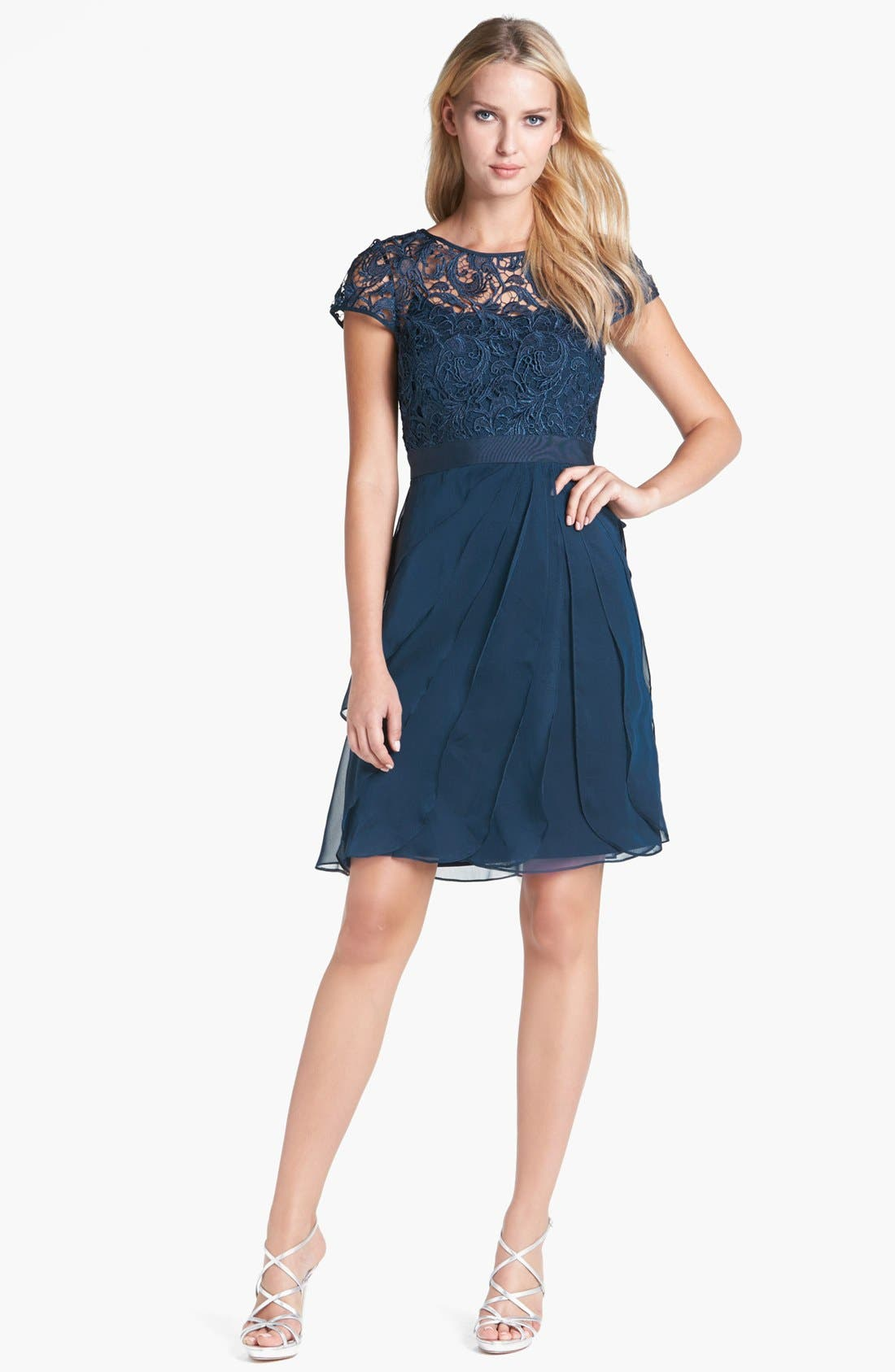 Alternate Image 3  - Adrianna Papell Lace & Tiered Chiffon Dress (Regular & Petite)