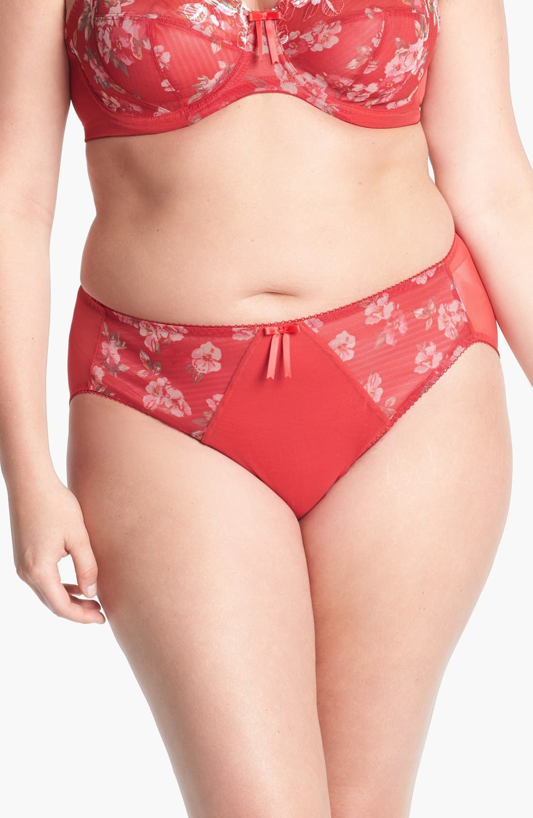 Alternate Image 1 Selected - Elomi 'Renee' Briefs (Plus Size)