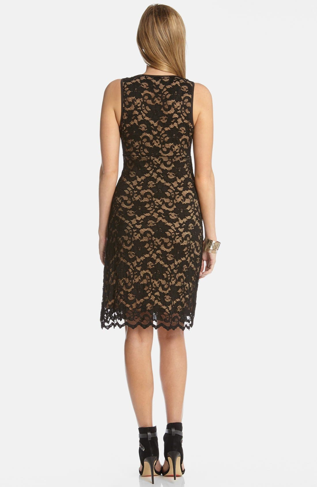 Alternate Image 2  - Karen Kane V-Neck Lace Dress