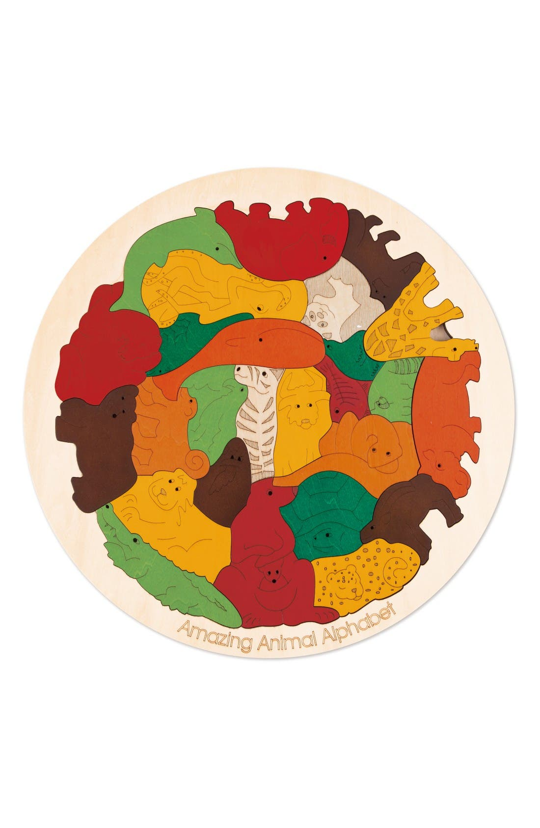 Amazing Animal Alphabet,                         Main,                         color, Multi