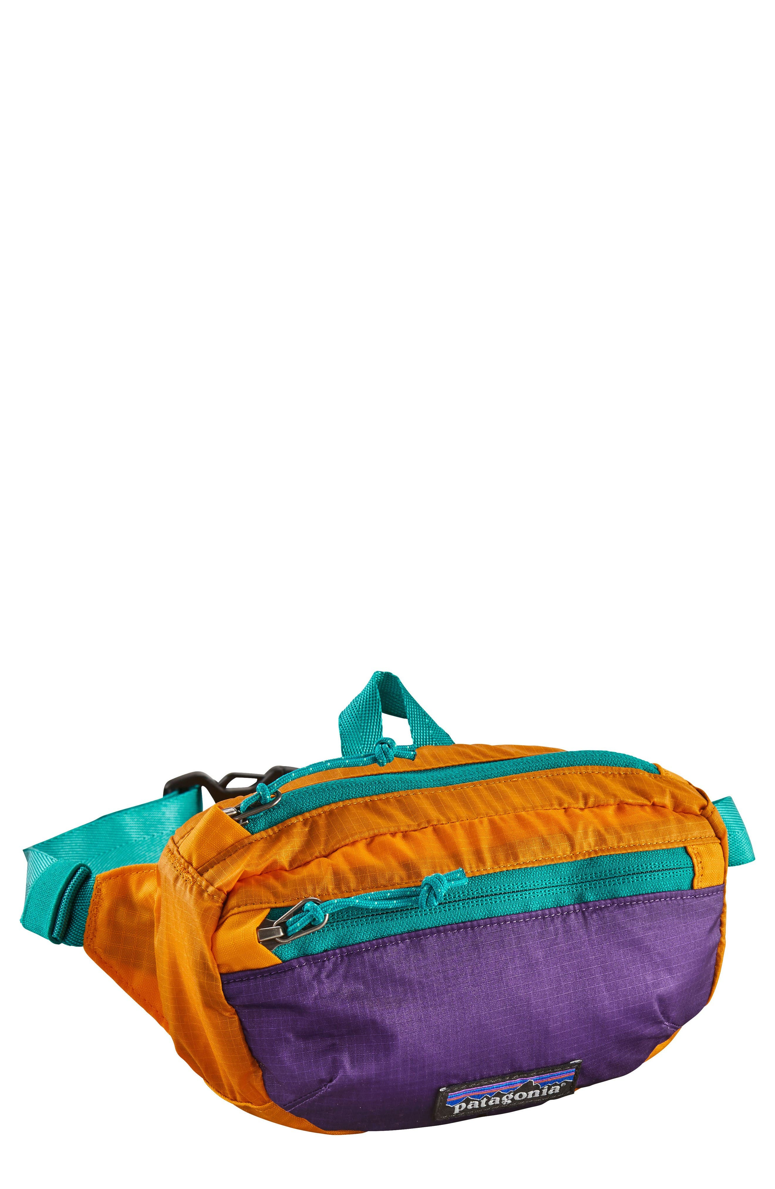 Alternate Image 1 Selected - Patagonia Travel Belt Bag