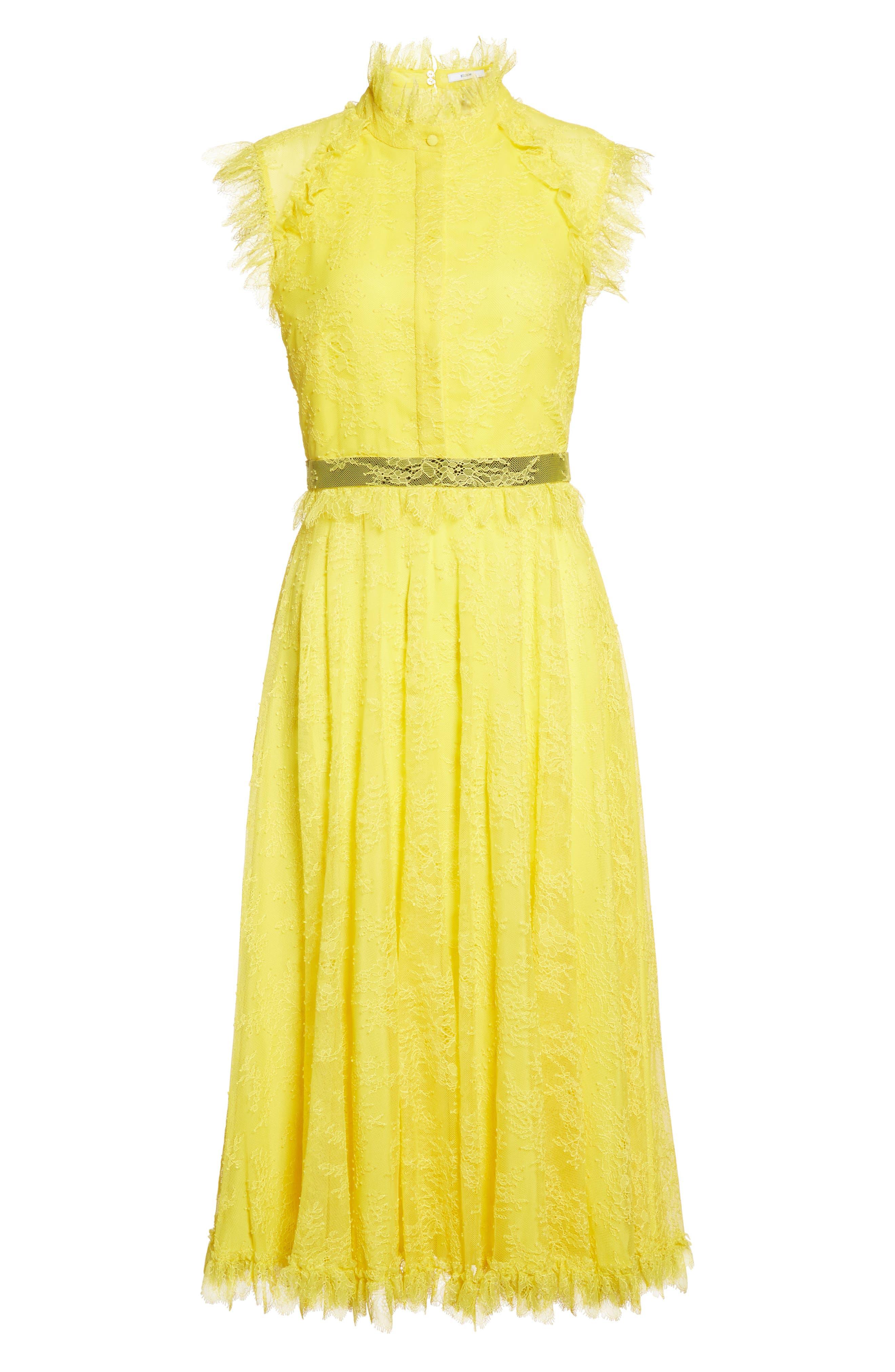 Alternate Image 4  - Erdem Tulle Lace Dress