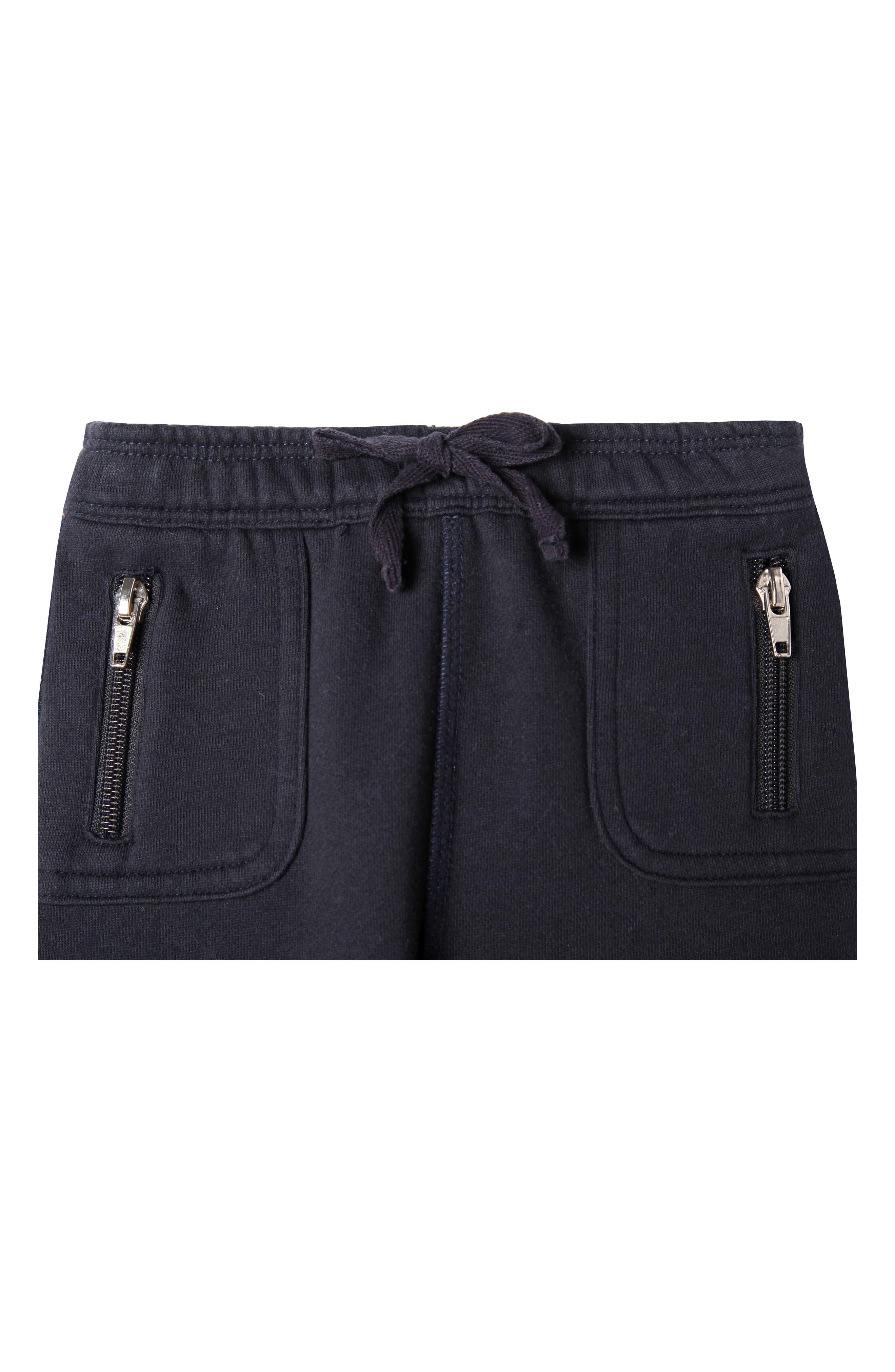 Mercer Organic Cotton Jogger Pants,                             Alternate thumbnail 2, color,                             True Navy