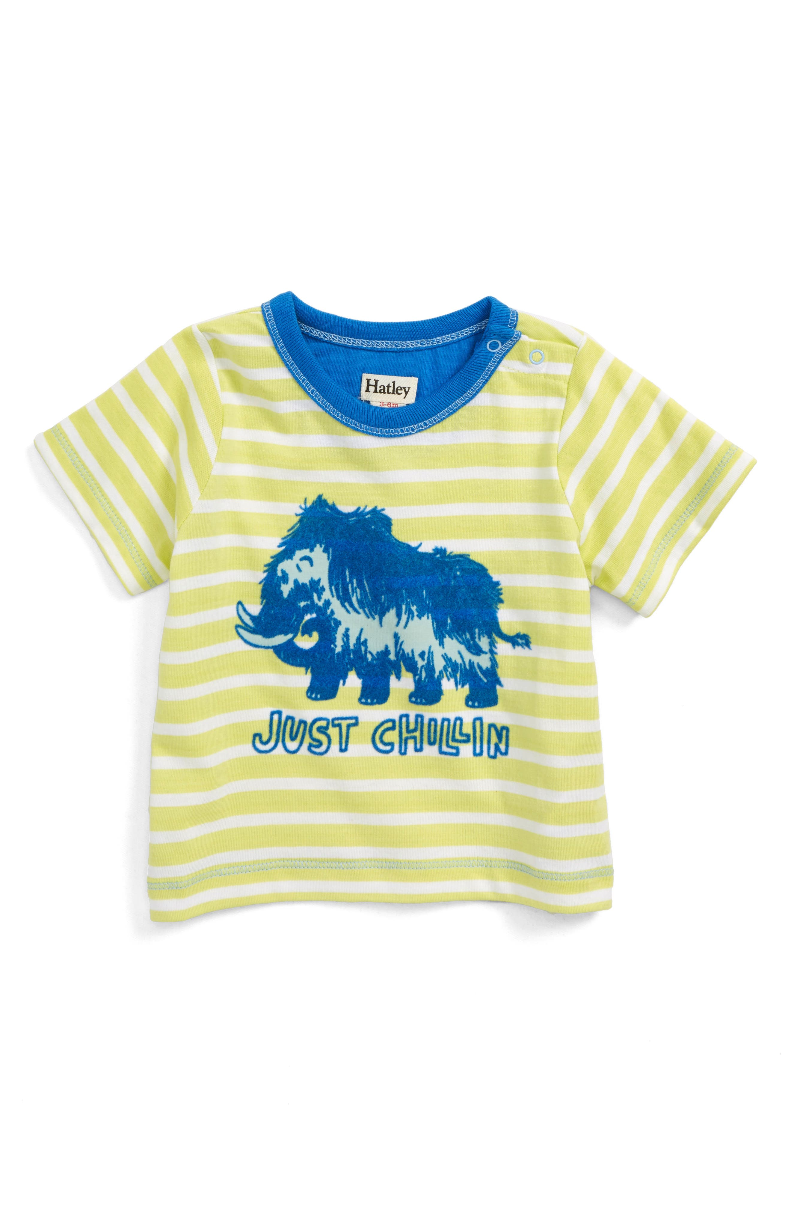 Graphic T-Shirt,                         Main,                         color, Woolly Mammoth