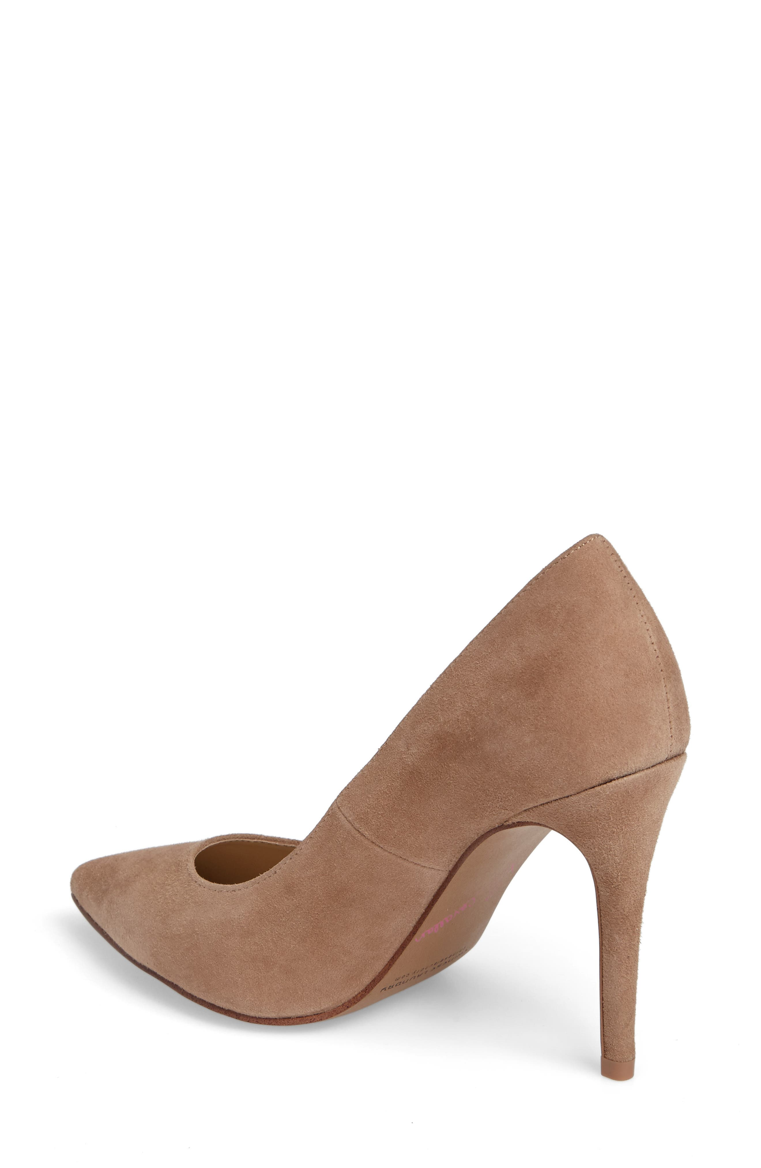 Gisele Pointy Toe Pump,                             Alternate thumbnail 2, color,                             Clay Suede