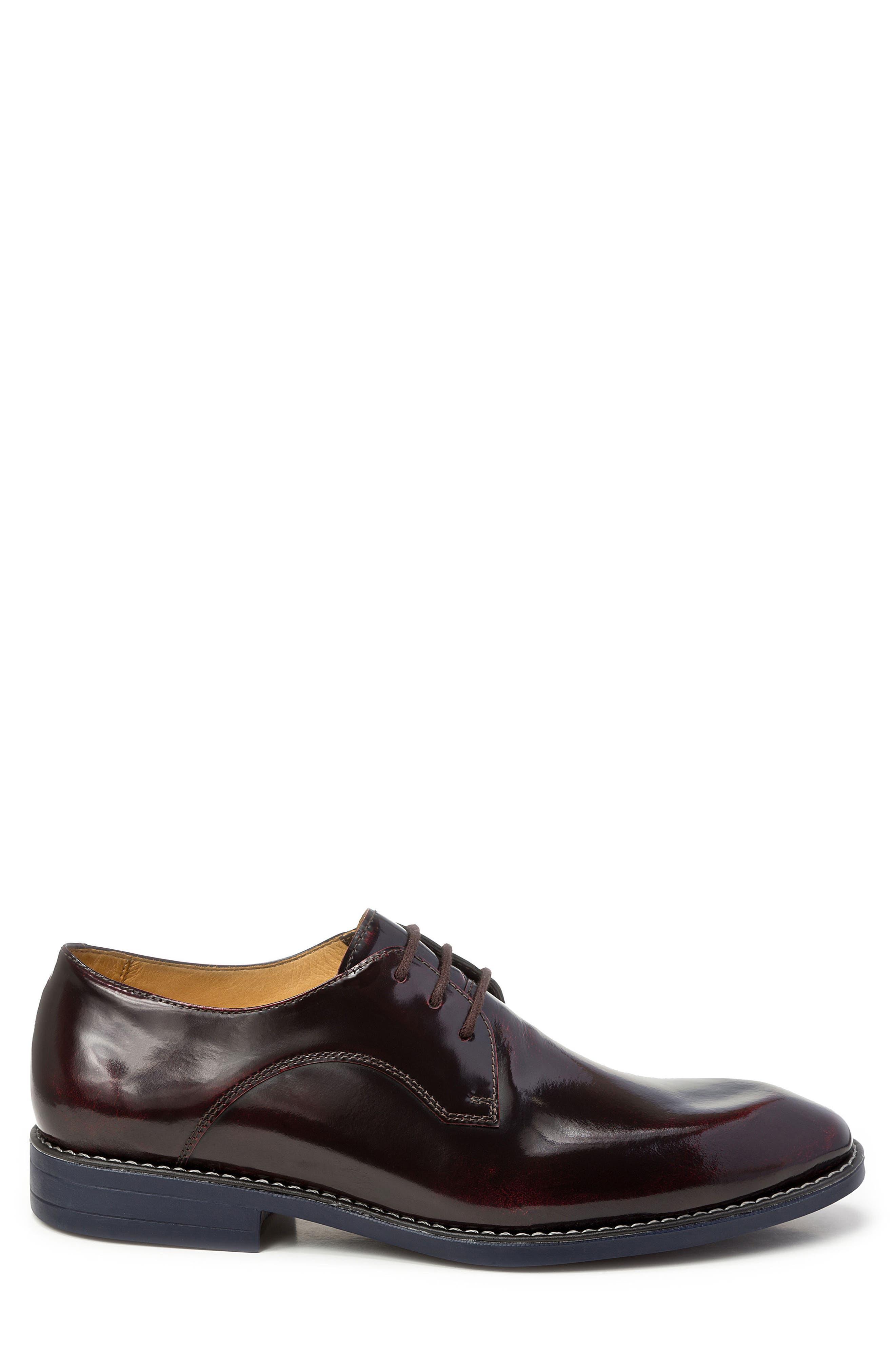 Alternate Image 3  - Sandro Moscoloni Garret Plain Toe Derby (Men)